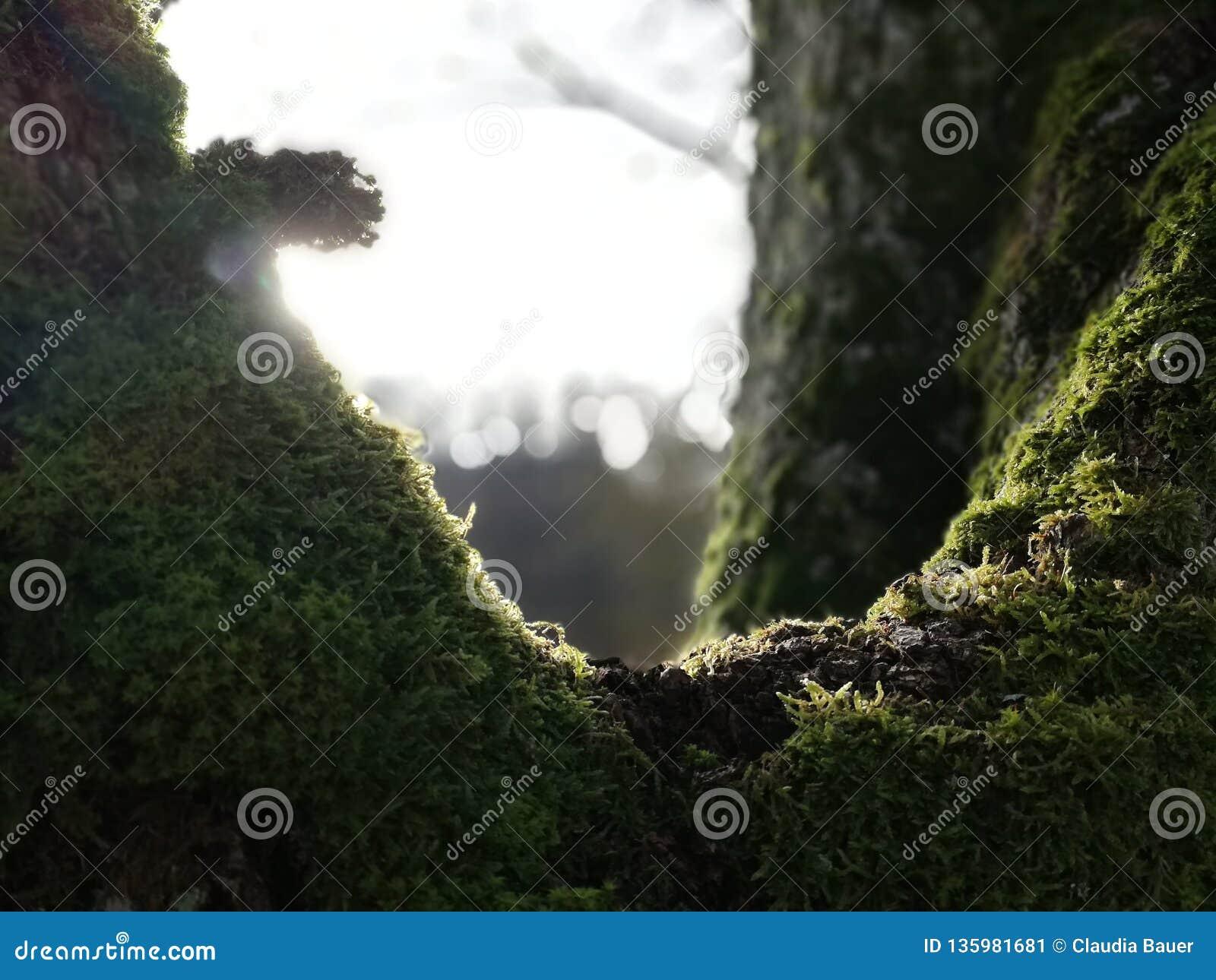 La lumière du soleil perce les nuages pour produire l éclairage déprimé sur un pilier de pêche au crépuscule
