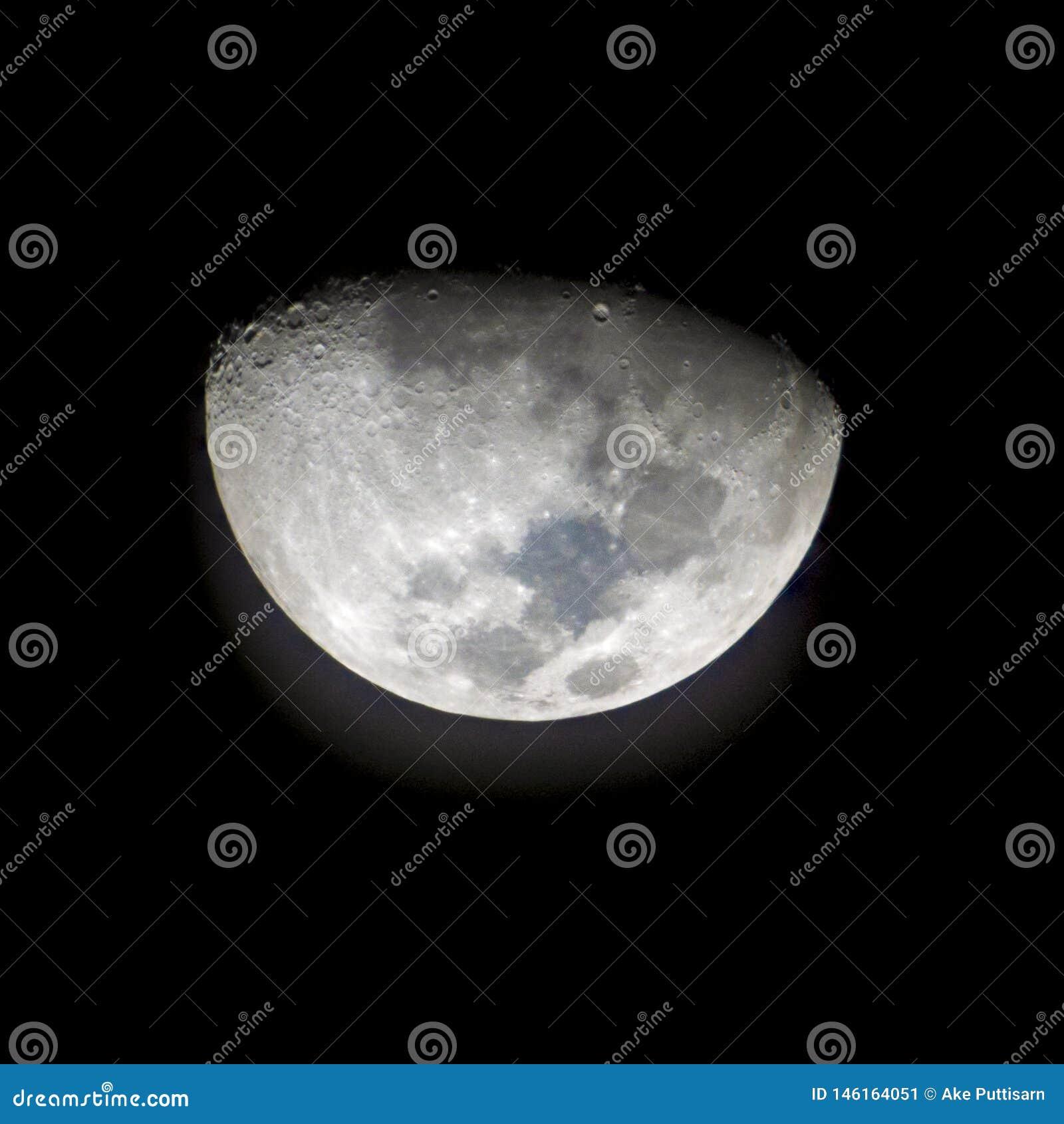 La luna dopo il primo trimestre per 2 giorni e preso mentre il moonset ha visto il coniglio headlong