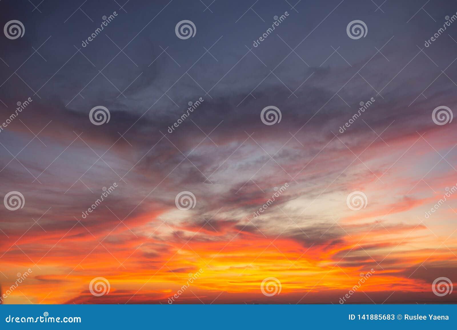 La luz del cielo del cielo es un misterio, en la atmósfera de oro crepuscular, diseño moderno de la estructura de la hoja, nuevo