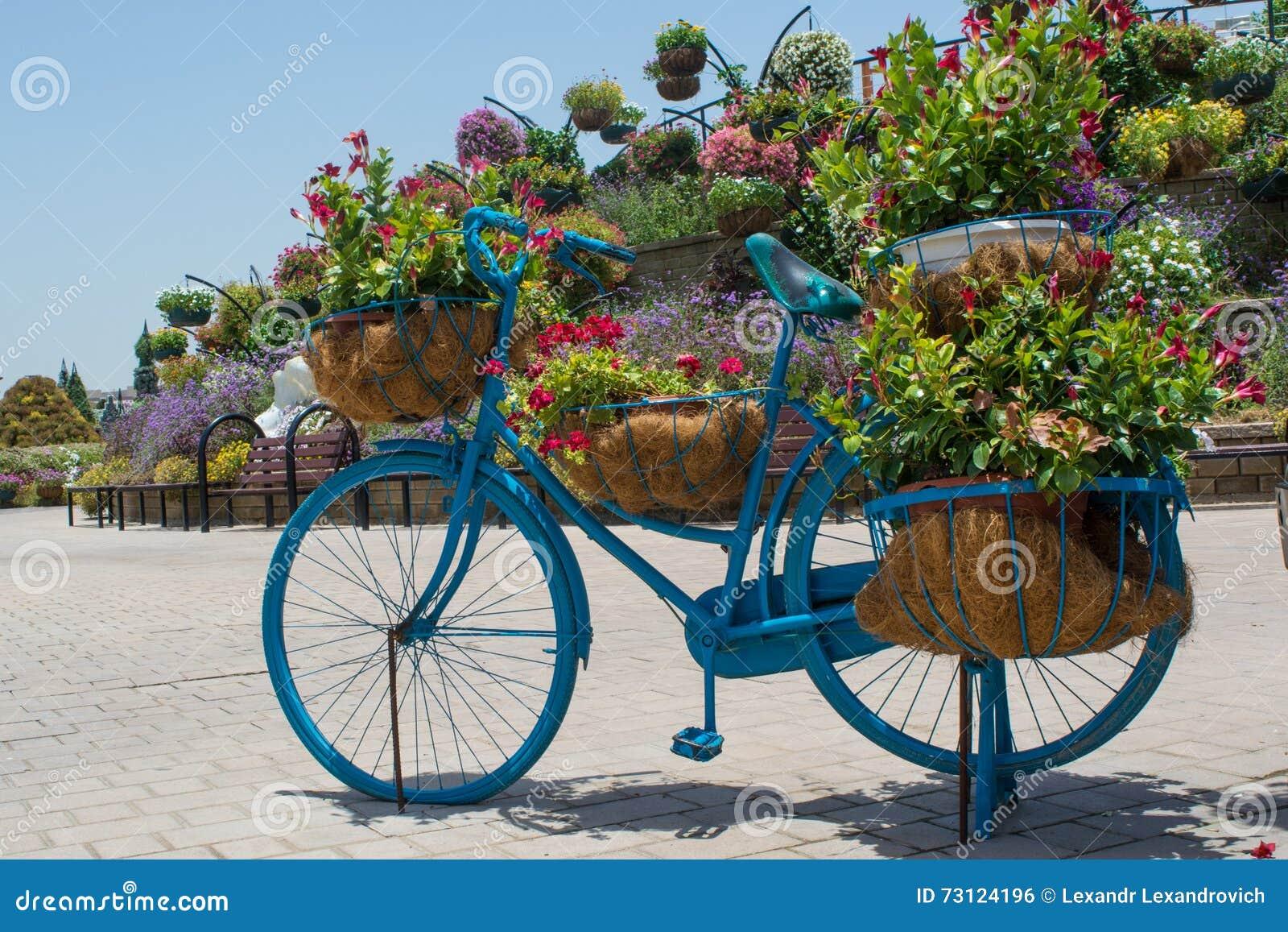 La maceta grande azul form la bicicleta con las flores - La bici azul ...