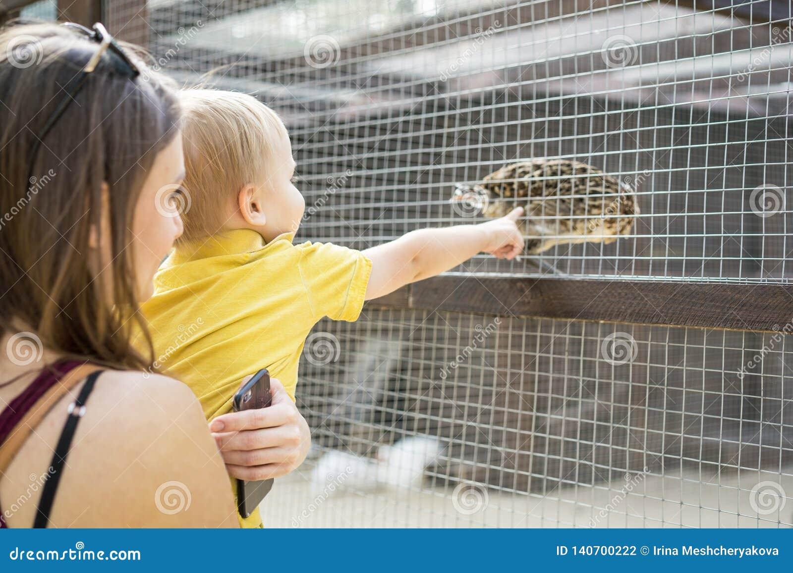 La madre hermosa de la mujer mantiene a su pequeño hijo parque zoológico y miran el pájaro
