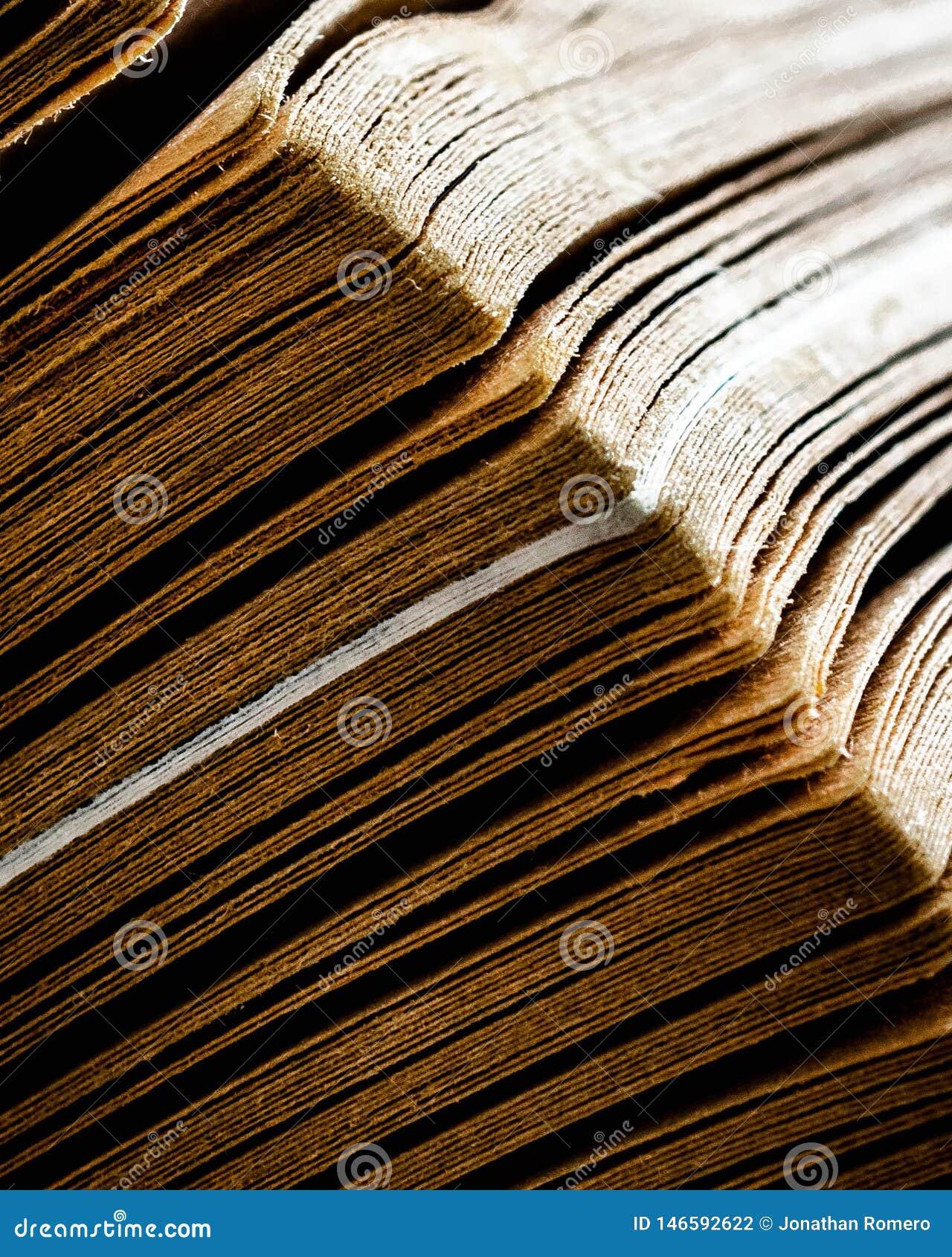 La magia di vecchi libri
