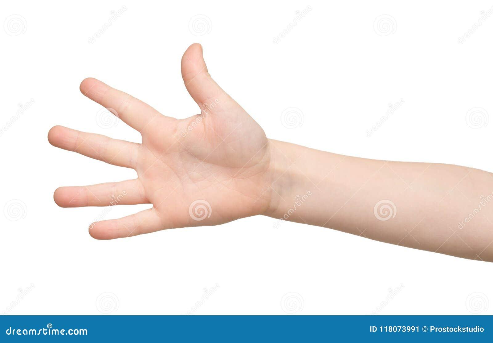 La main d enfant montre le numéro cinq sur le fond blanc
