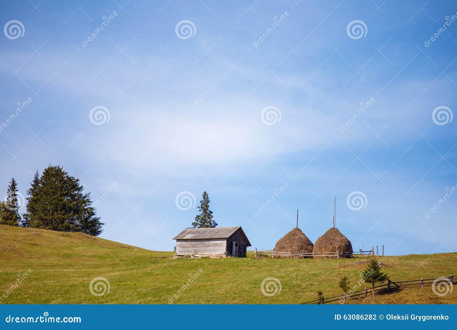 Download La Maison En Bois Près De Grand Récolte Sur Le Fond De Ciel Photo stock - Image du home, vert: 63086282