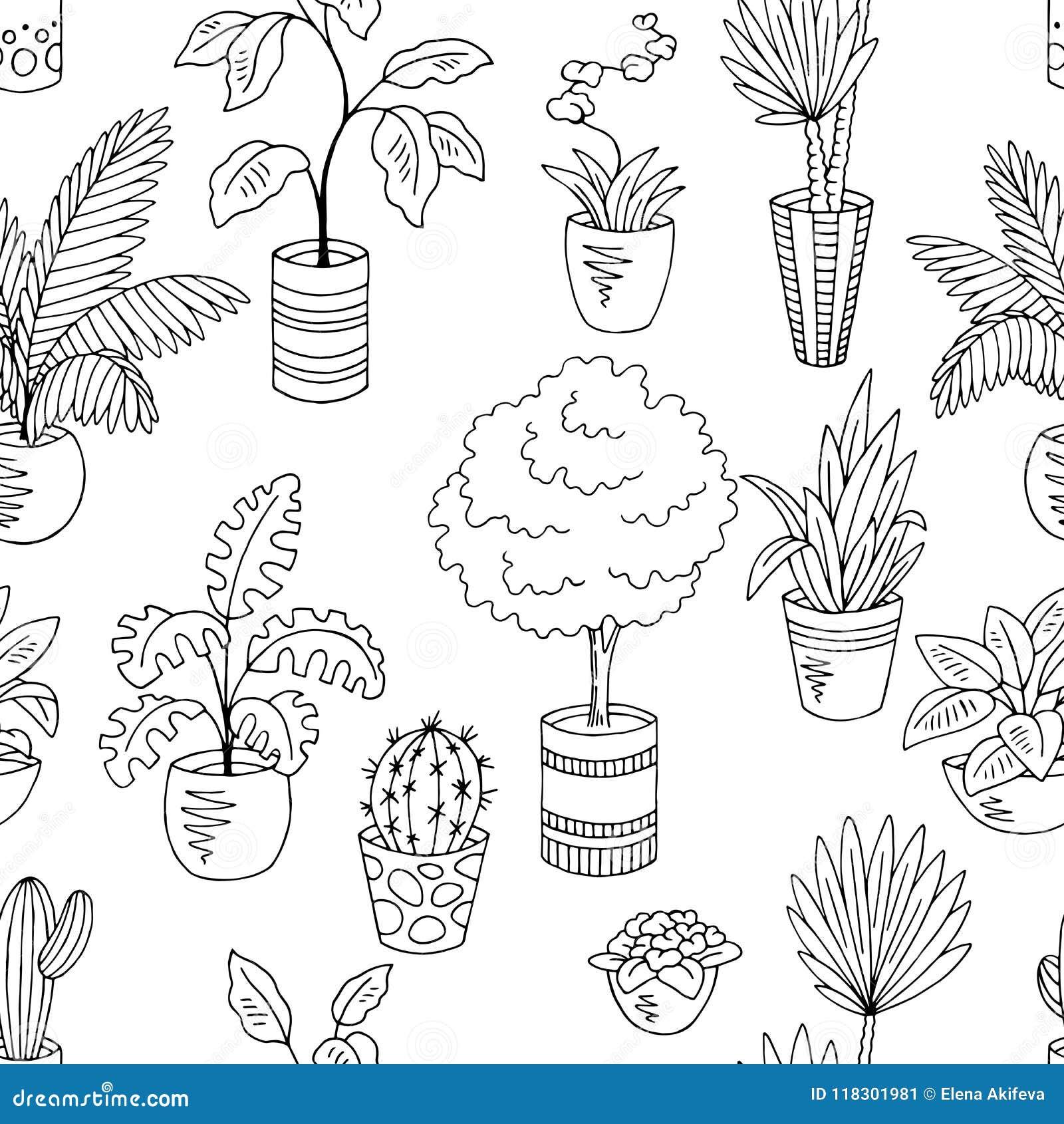 La Maison Plante Le Vecteur Sans Couture Blanc Noir