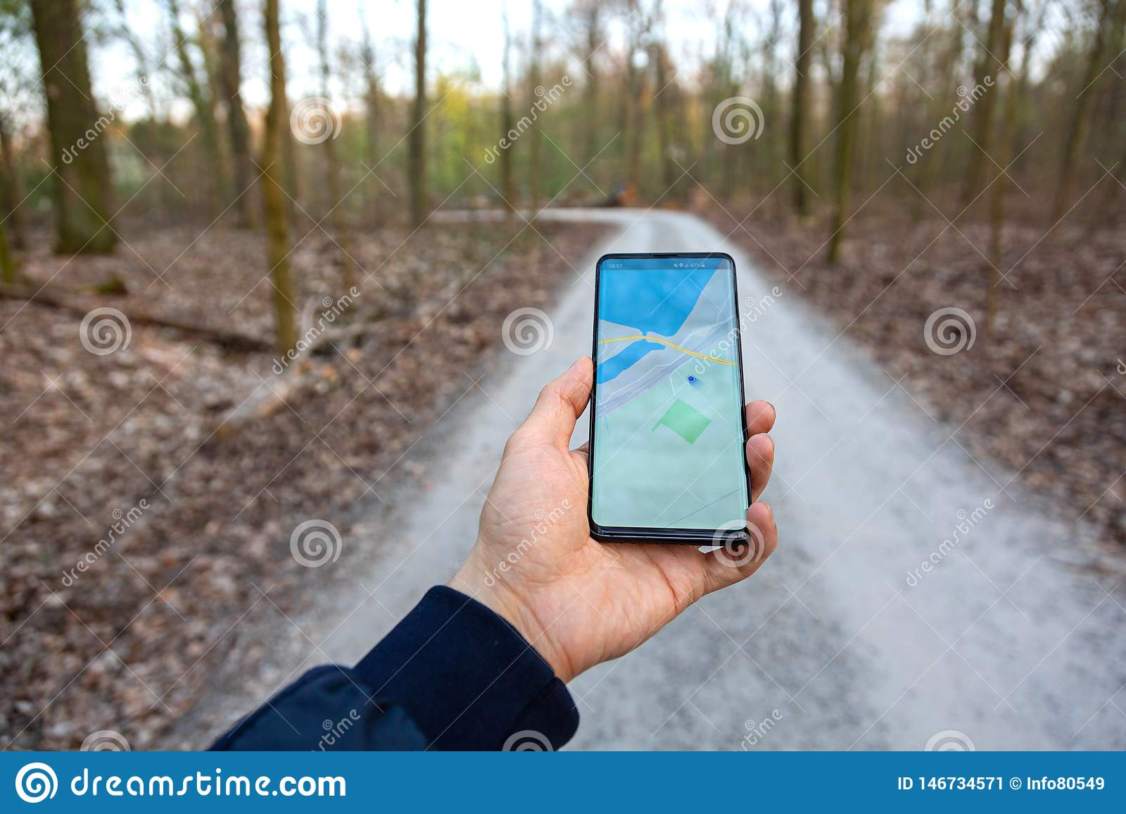 La mano che giudica una mostra del telefono cellulare gps traccia in un fondo della foresta