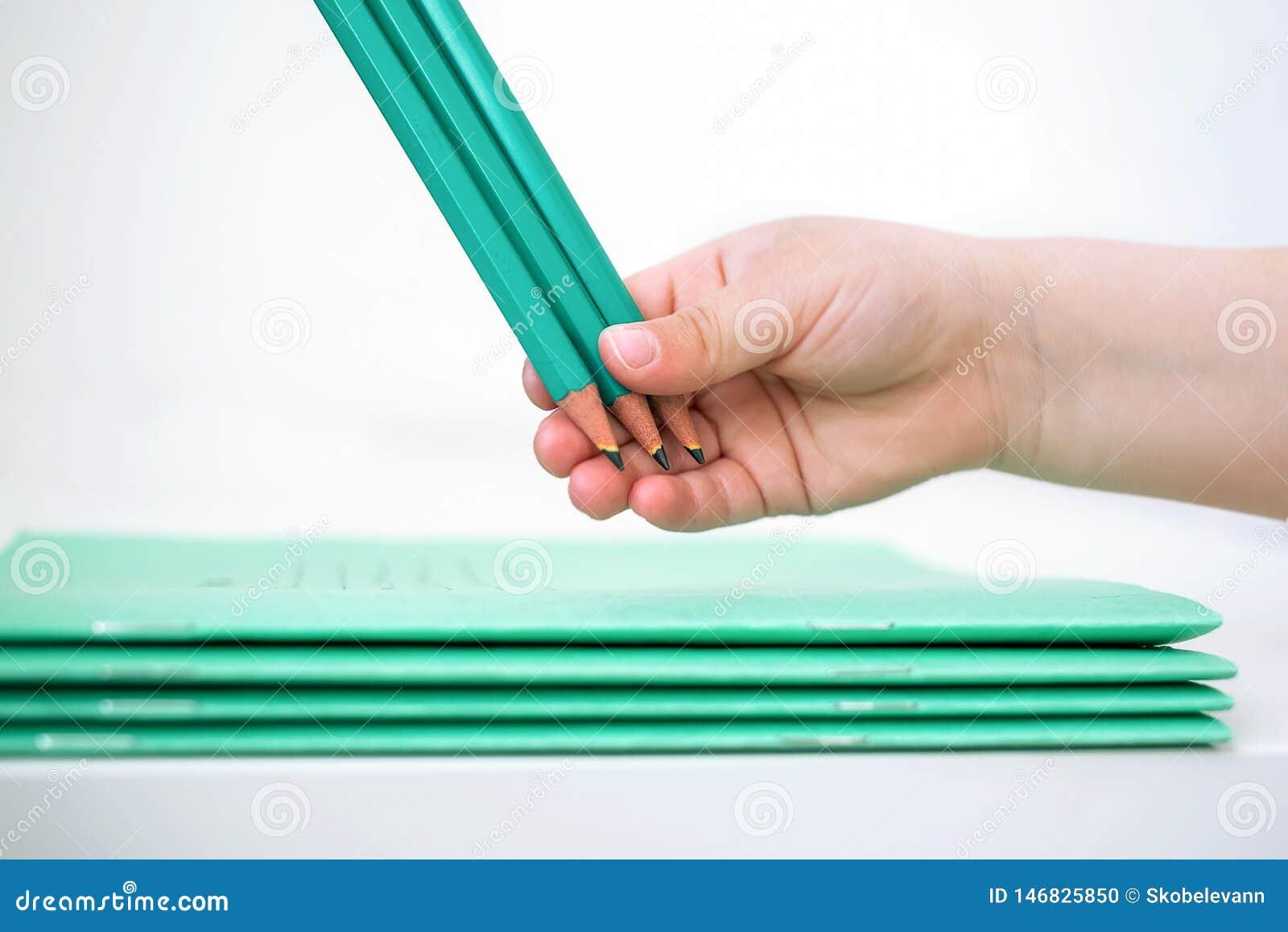 La mano de los niños sostiene los lápices cerca del cuaderno de la escuela
