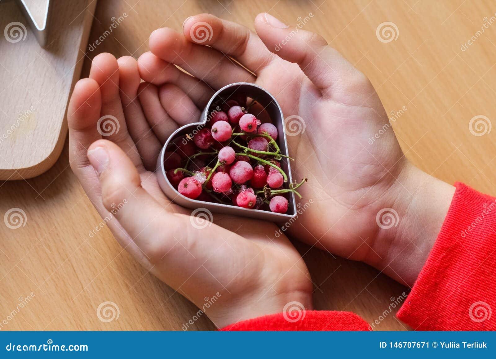 La mano de la ni?a que hace las galletas festivas tradicionales El cocer con concepto del amor El d?a de madre, el d?a de las muj