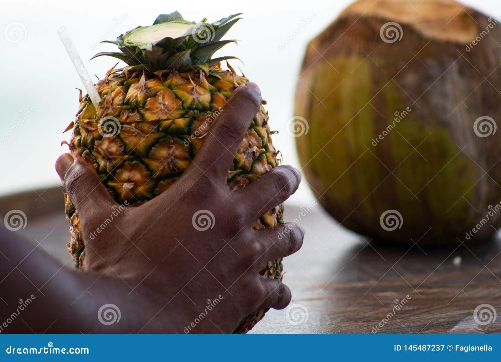La mano dell uomo domenicano che tiene un cocktail di colada di pina ? servito nell ananas, in una spiaggia tropicale nella Repub
