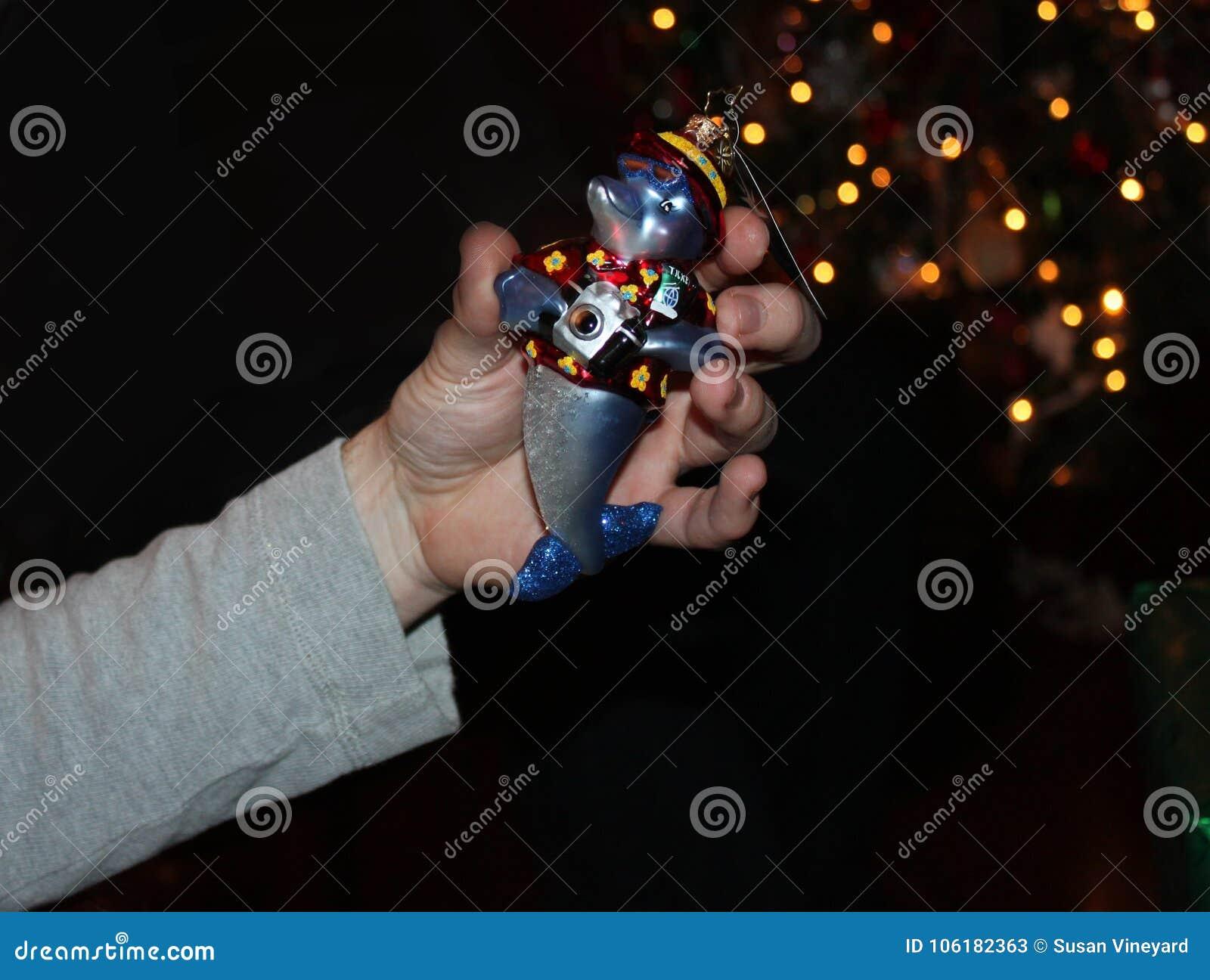 La mano sostiene el ornamento del árbol de navidad del dophin con la cámara delante del árbol de navidad del bokeh