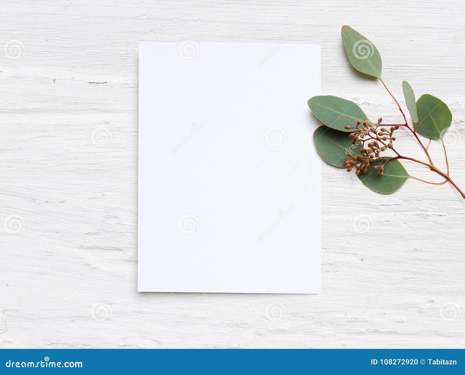La maqueta de escritorio de la boda femenina con la tarjeta de papel en blanco y el populus del eucalipto ramifican en el fondo l