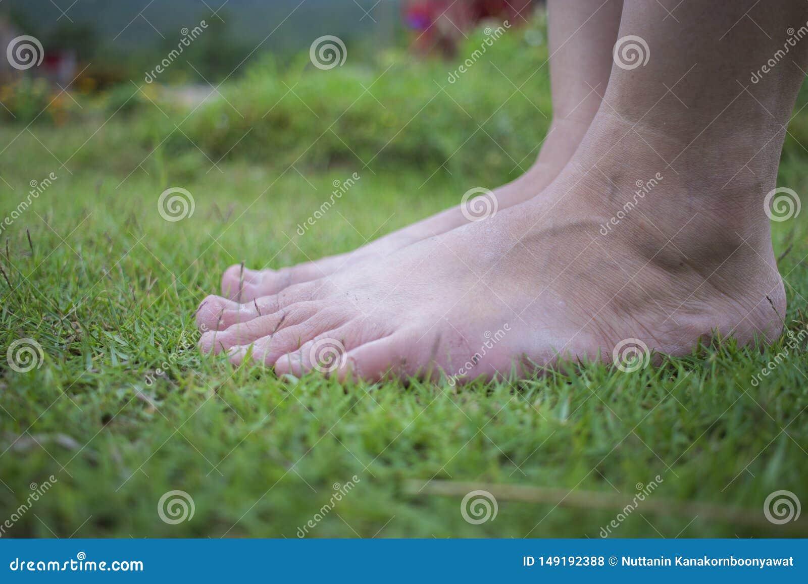 La marche aux pieds nus de la jeune femme sur l herbe fra?che et verte en ?t? ensoleill? pendant le matin Moment reposant Style d