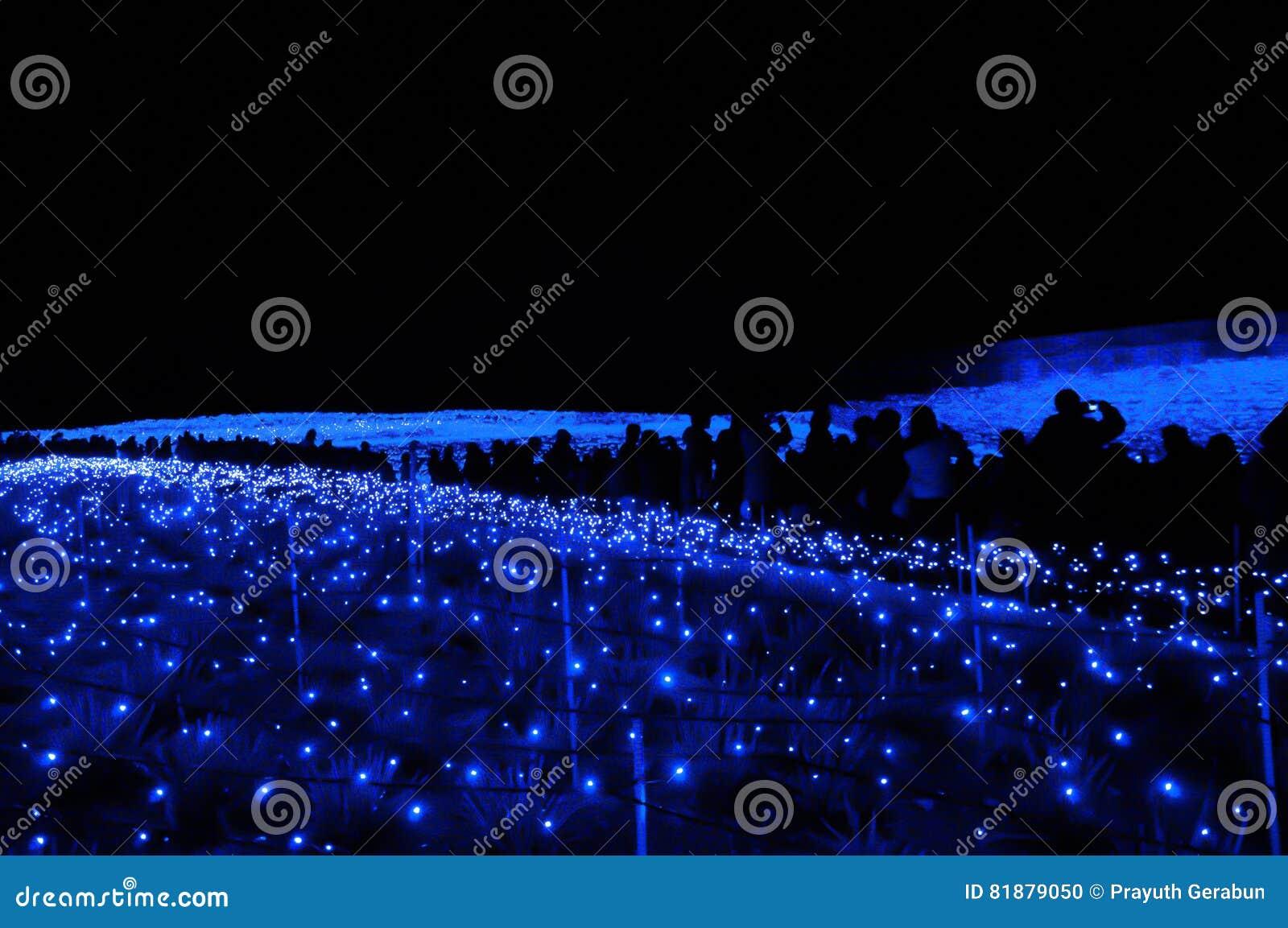 La Mer De La Lumière Dans Nabana Aucun Jardin De Sato La Nuit En ...
