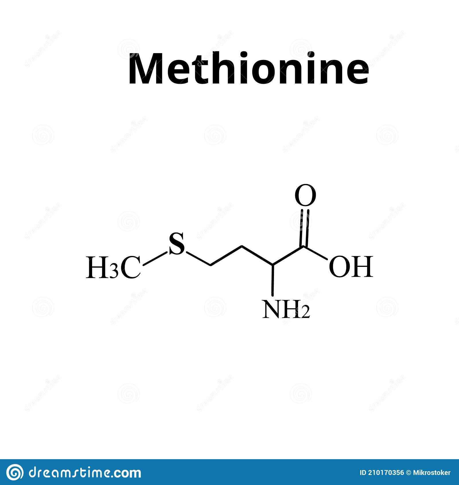 La Metionina Es Un Aminoácido Fórmula Molecular Química De Aminoácido Metionina Ilustración Vectorial En Aislado Ilustración Del Vector Ilustración De Metionina Metabolismo 210170356