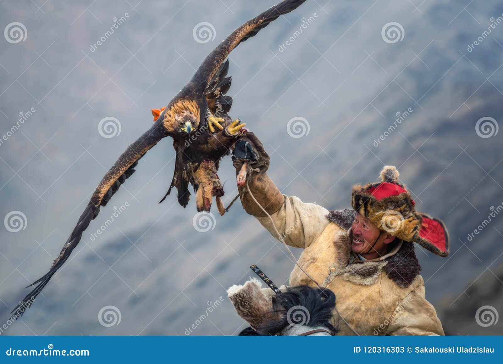 La Mongolie, Eagle Festival d or Hunter On Horse With Eagle d or magnifique, répandant ses ailes et tenant sa proie