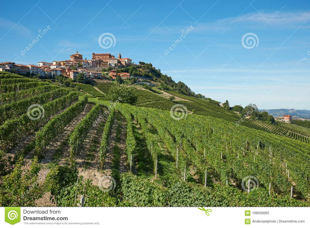 la morra town in piedmont, langhe hills with vineyards in italy