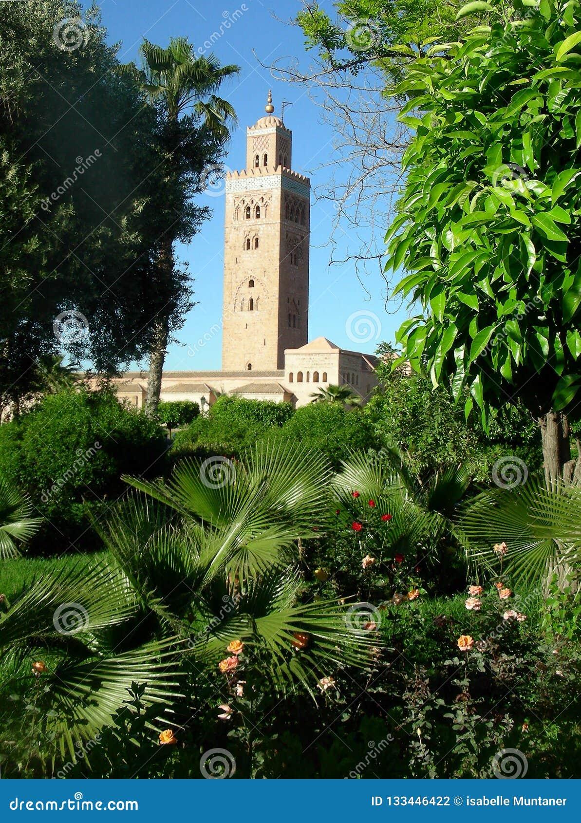 La mosquée de Koutoubia de Marrakech par la végétation verte du parc public, Marocco