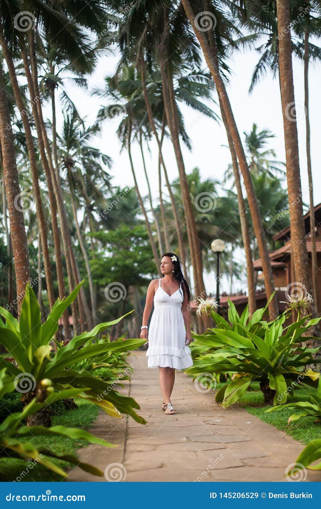 La muchacha camina entre las palmeras Muchacha que descansa sobre el c?sped novia en luna de miel Territorio del hotel