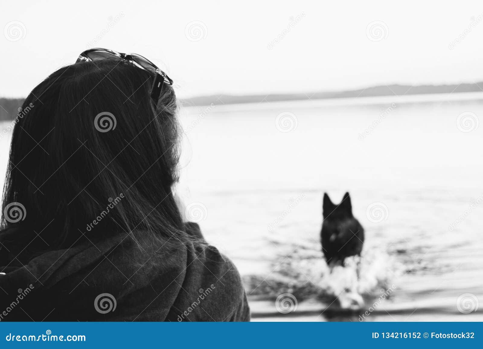 La muchacha en las miradas de la playa en el perro