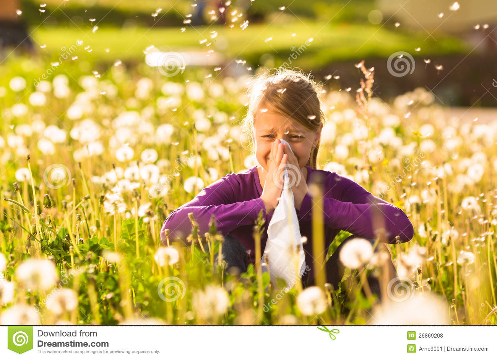 La muchacha en prado y tiene fiebre o alergia de heno