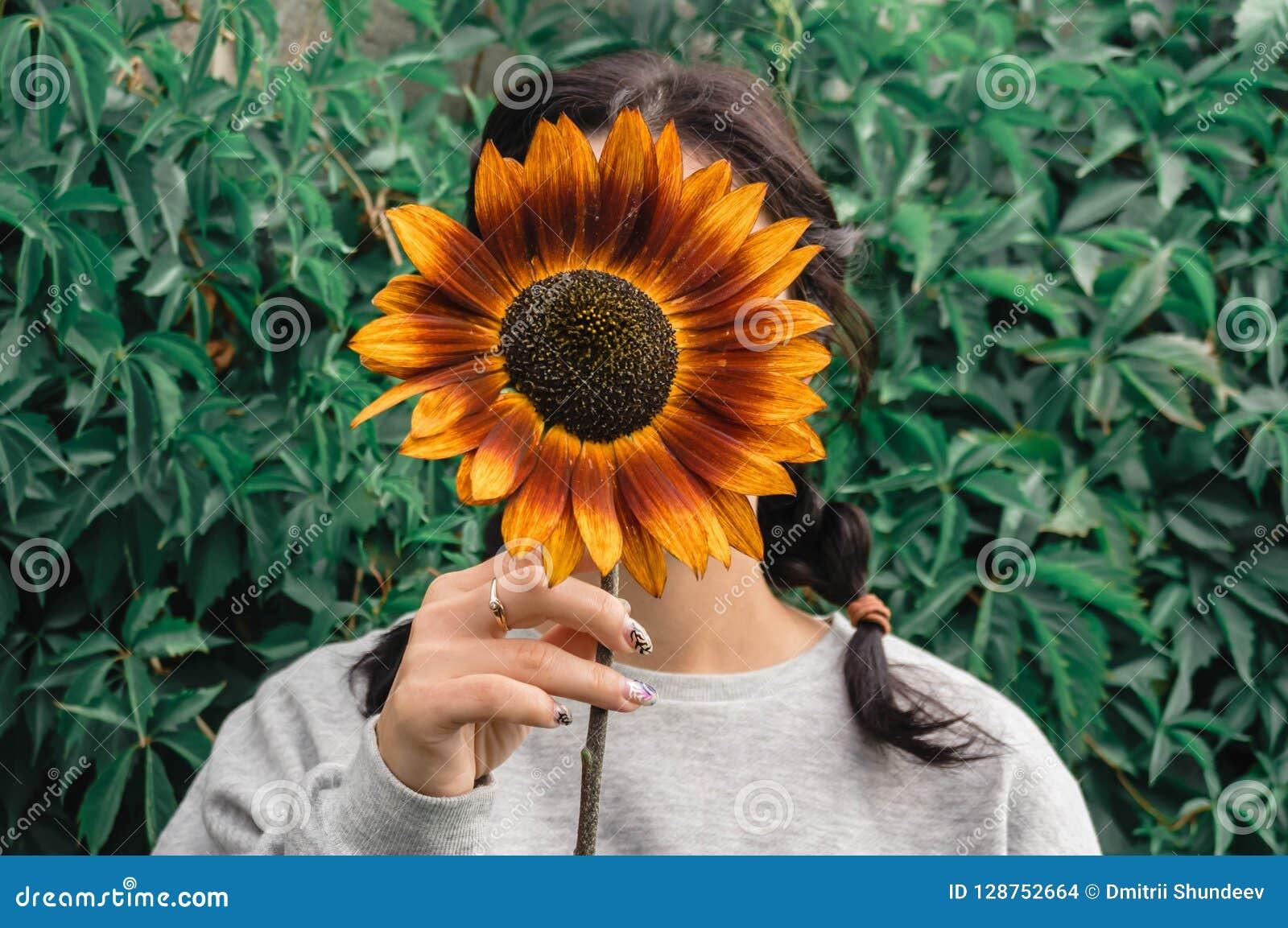 La muchacha oculta su cara detrás de un girasol