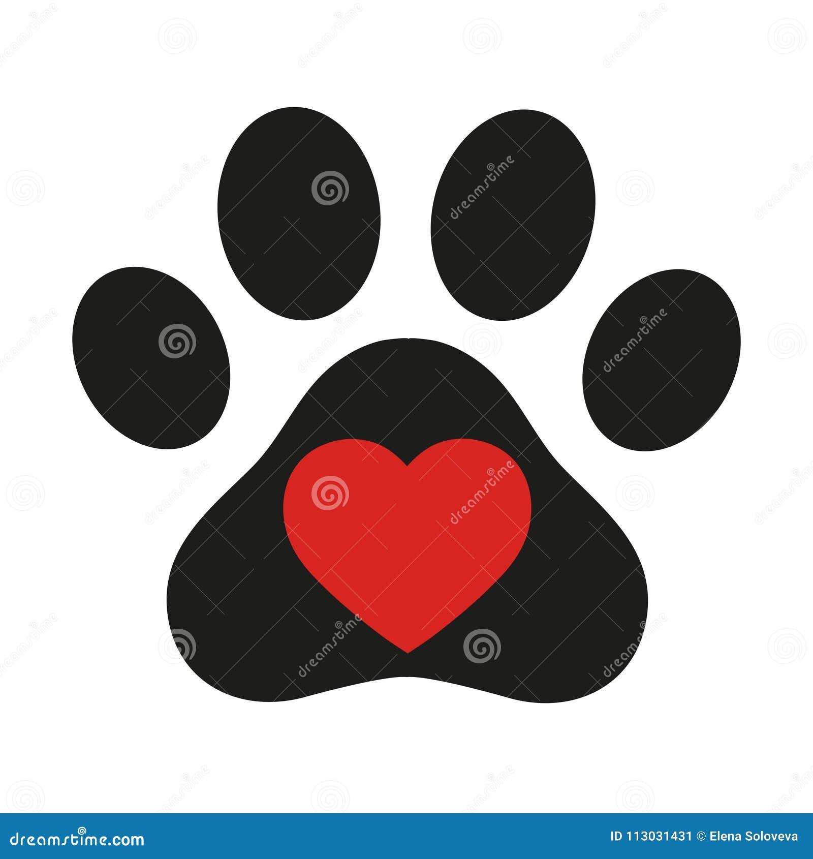 La muestra del amor para los animales con las patas