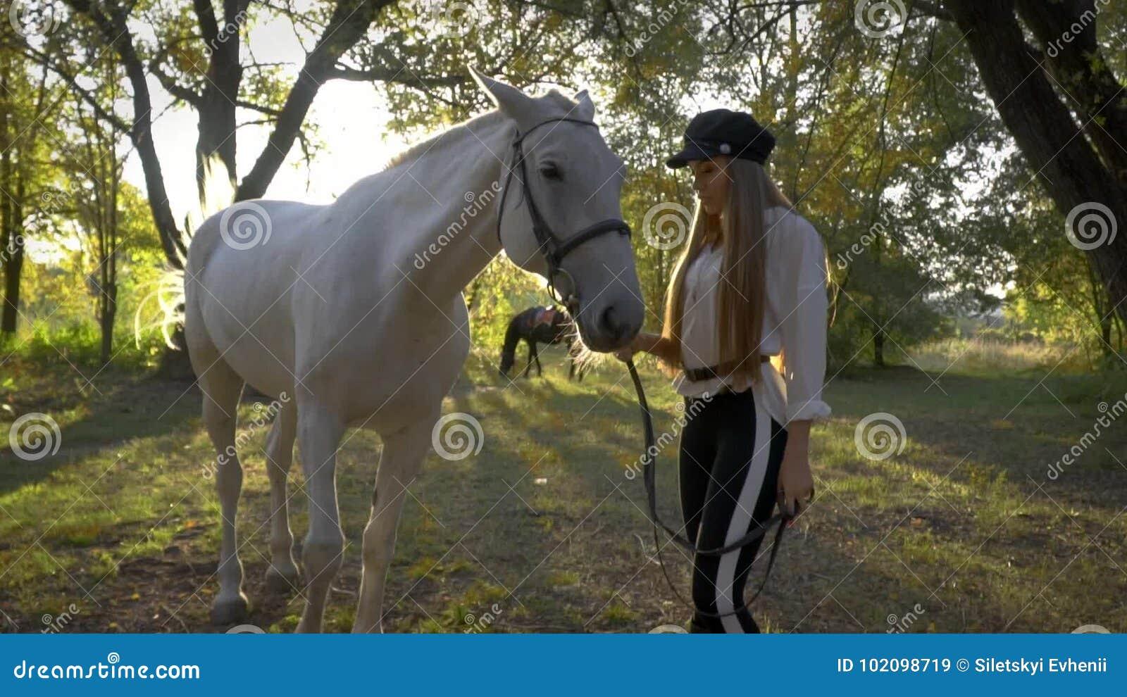 Zapatillas para acrobacias con caballos