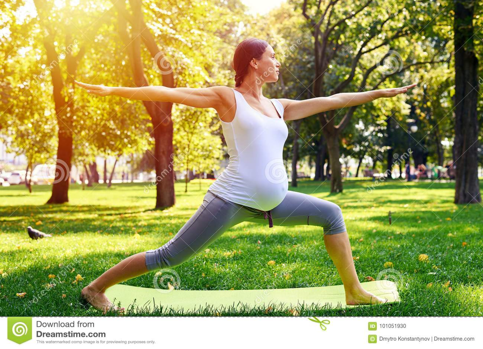 La mujer embarazada armoniosa que medita en yoga presenta al aire libre