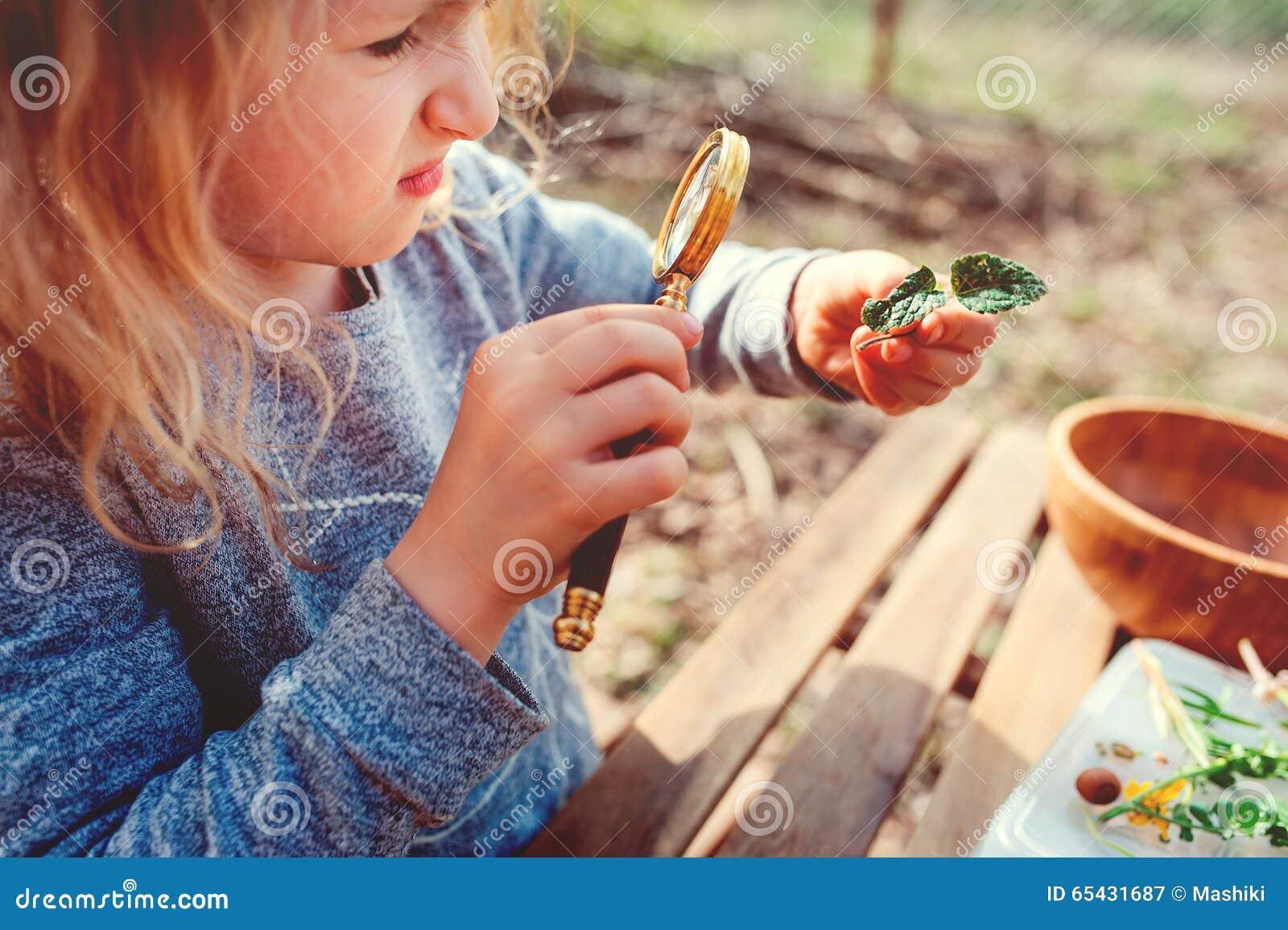 La natura d esplorazione della ragazza del bambino nella foresta in anticipo della molla scherza l apprendimento amare la natura