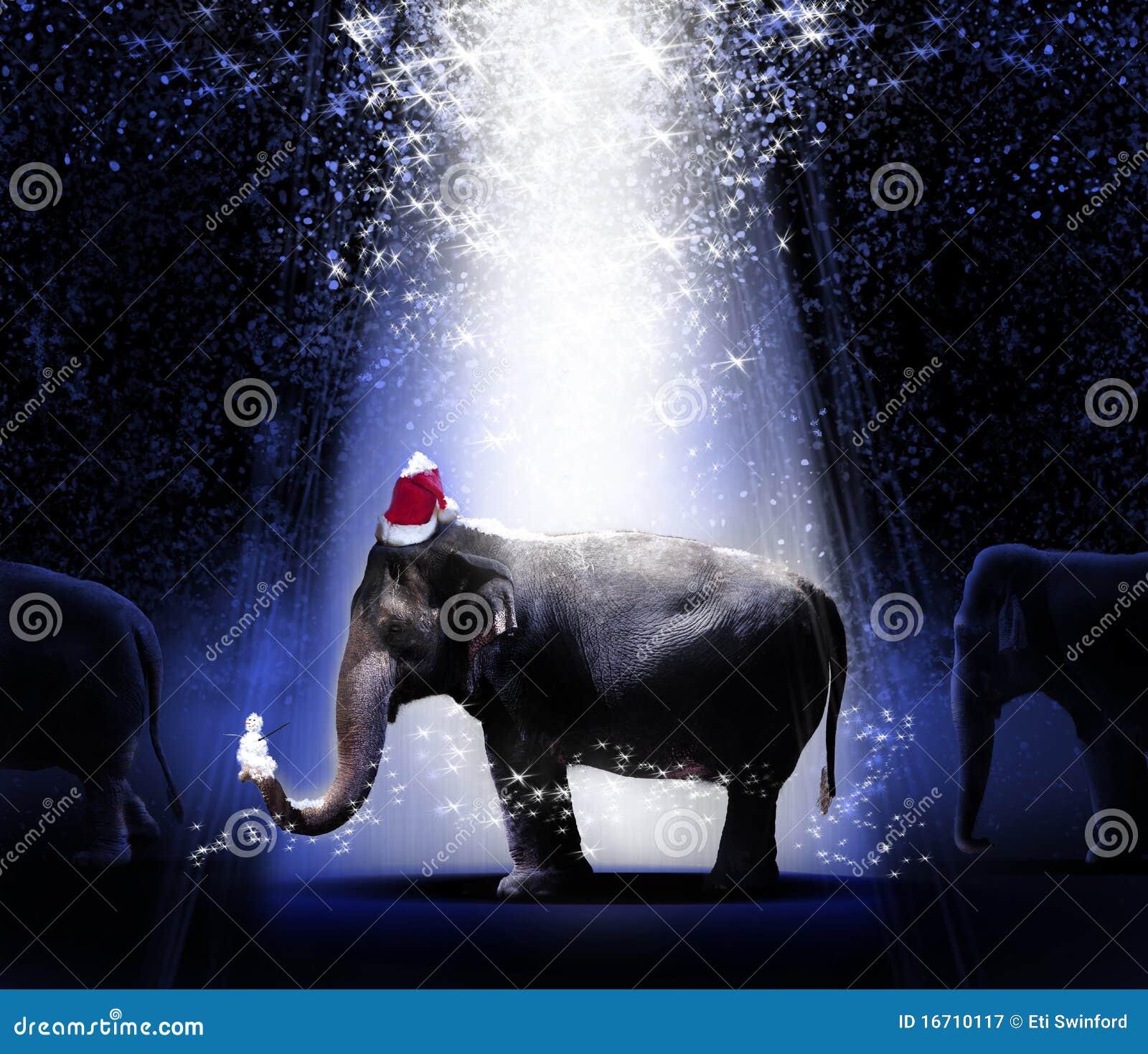 La Navidad de los elefantes