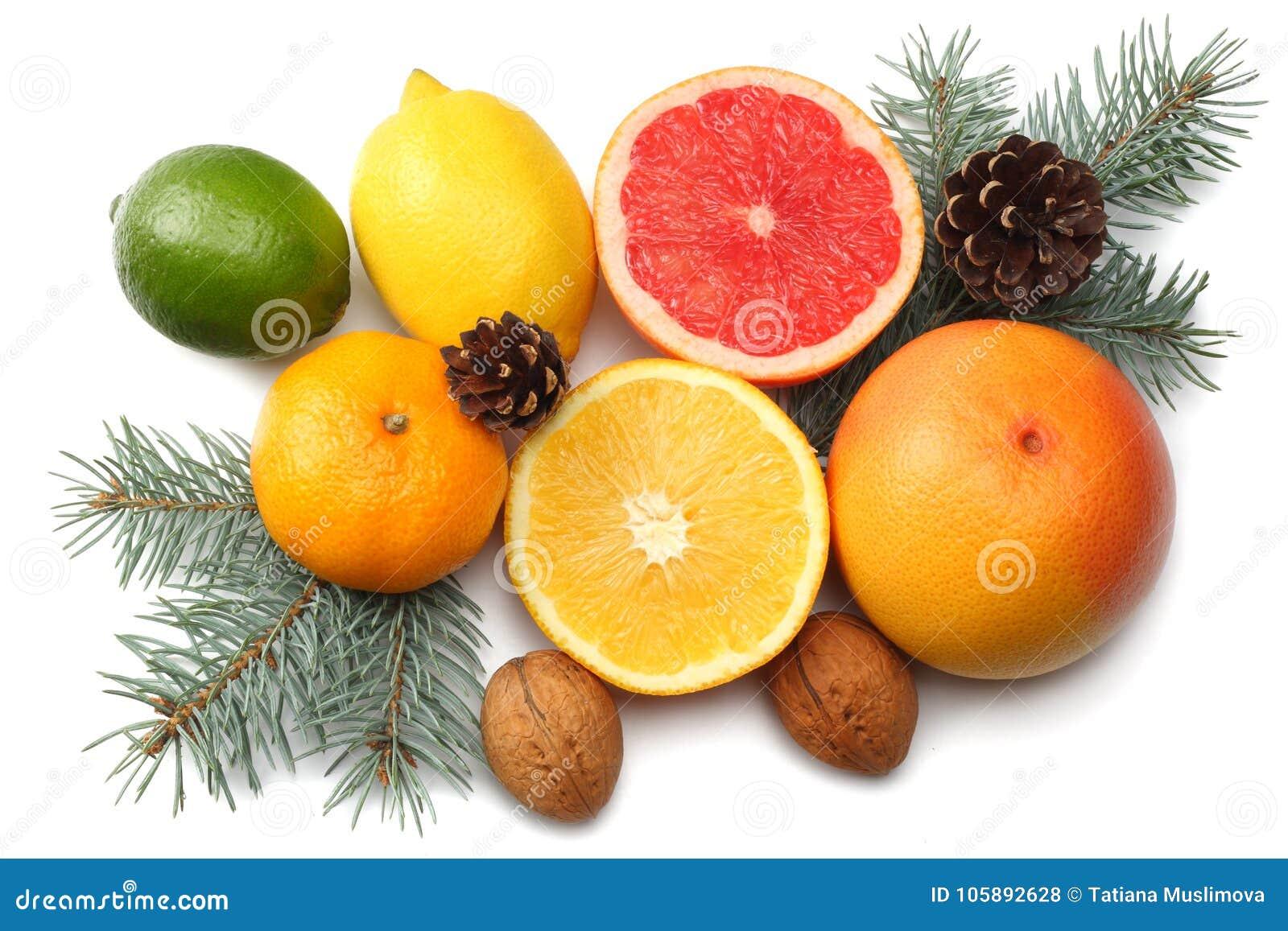 La Navidad mezcle el limón cortado, la cal verde, la naranja, el mandarín, la fruta de kiwi y el pomelo con el cono y el árbol de