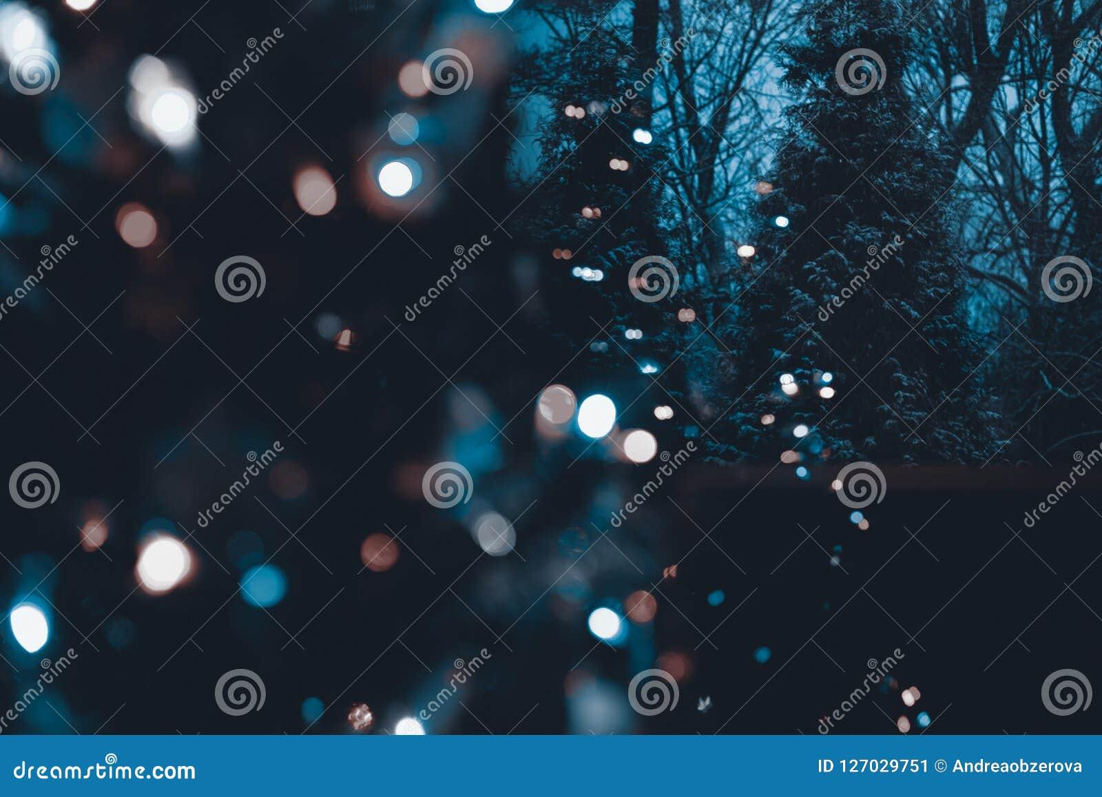 La neige a couvert les arbres à feuilles persistantes la nuit d arbre de Noël lumineux defocused dans le premier plan