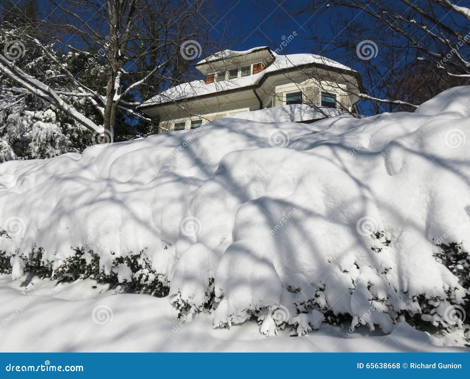 La neige a couvert les buissons et la maison