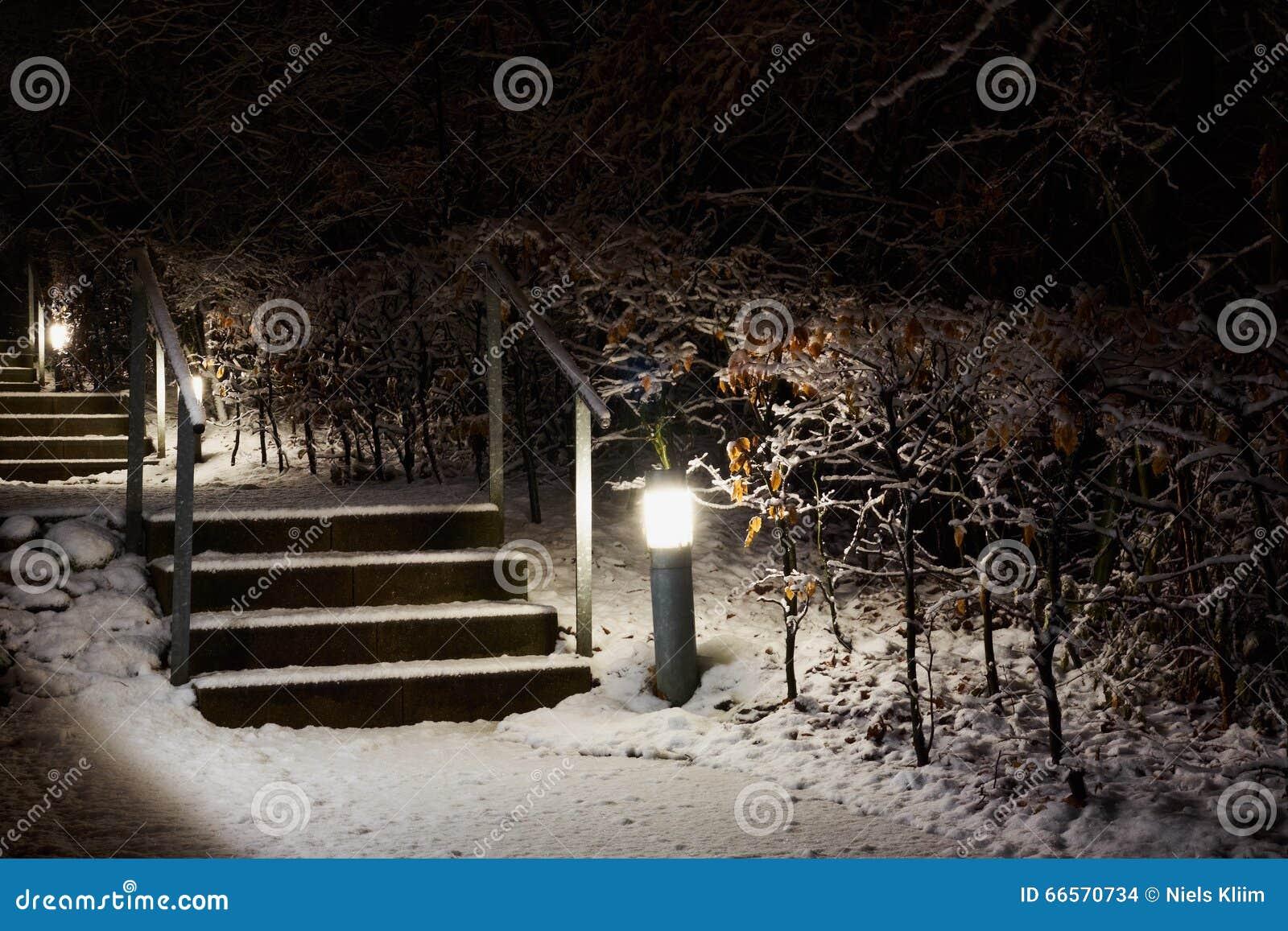 escalier exterieur neige