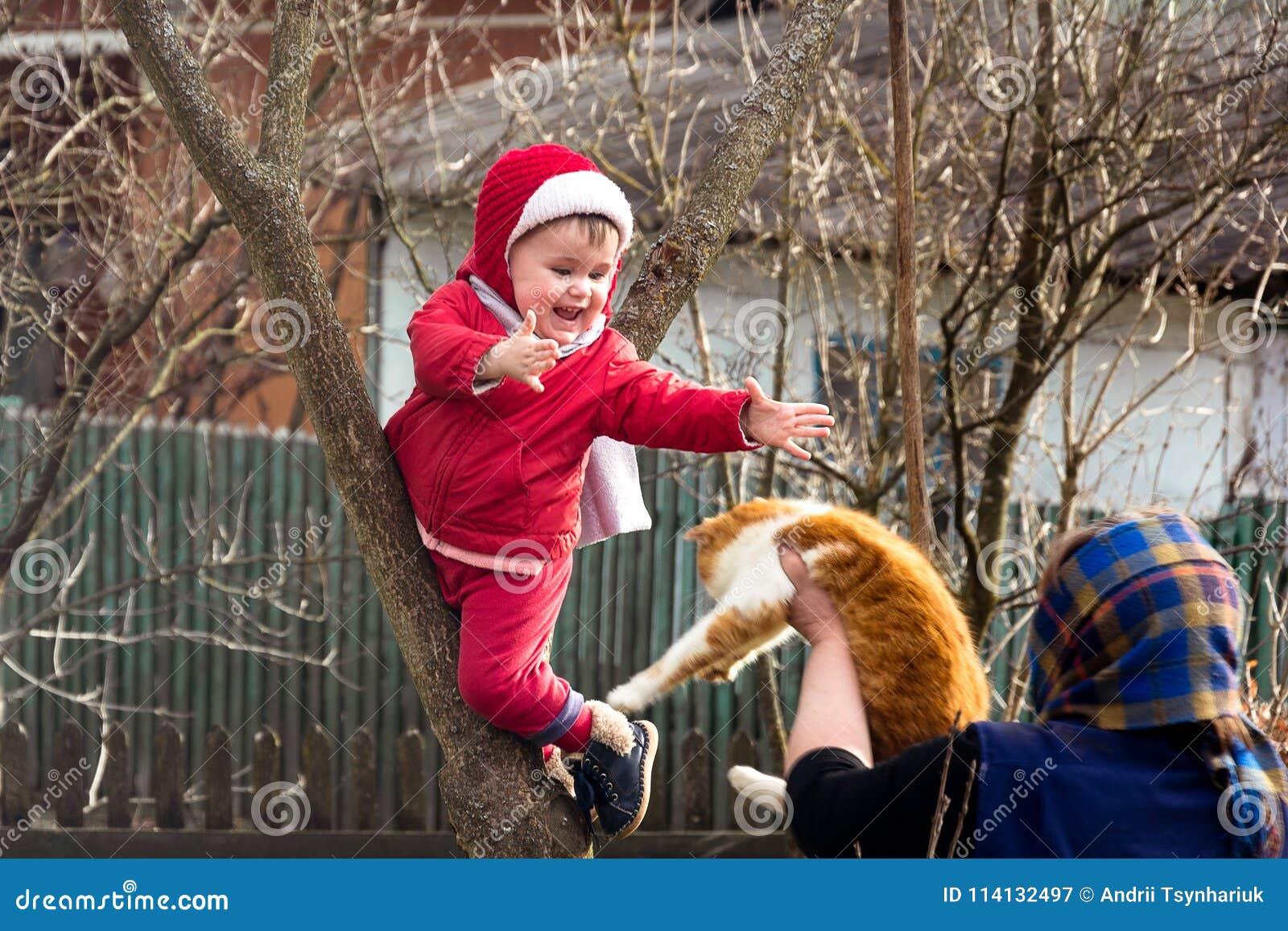 La nonna rurale dà nelle mani di un gatto un bambino che ha scalato un albero
