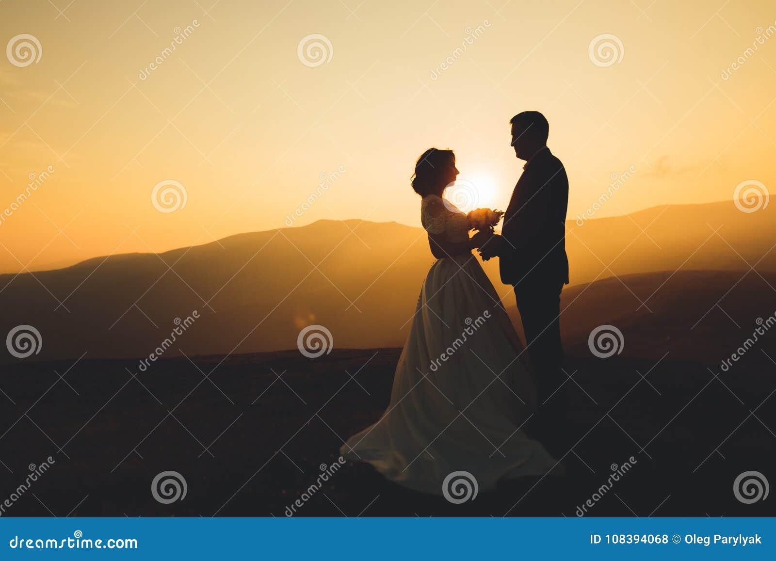 La novia y el novio hermosos felices de los pares de la boda en el día de boda al aire libre en las montañas oscilan Pares de la