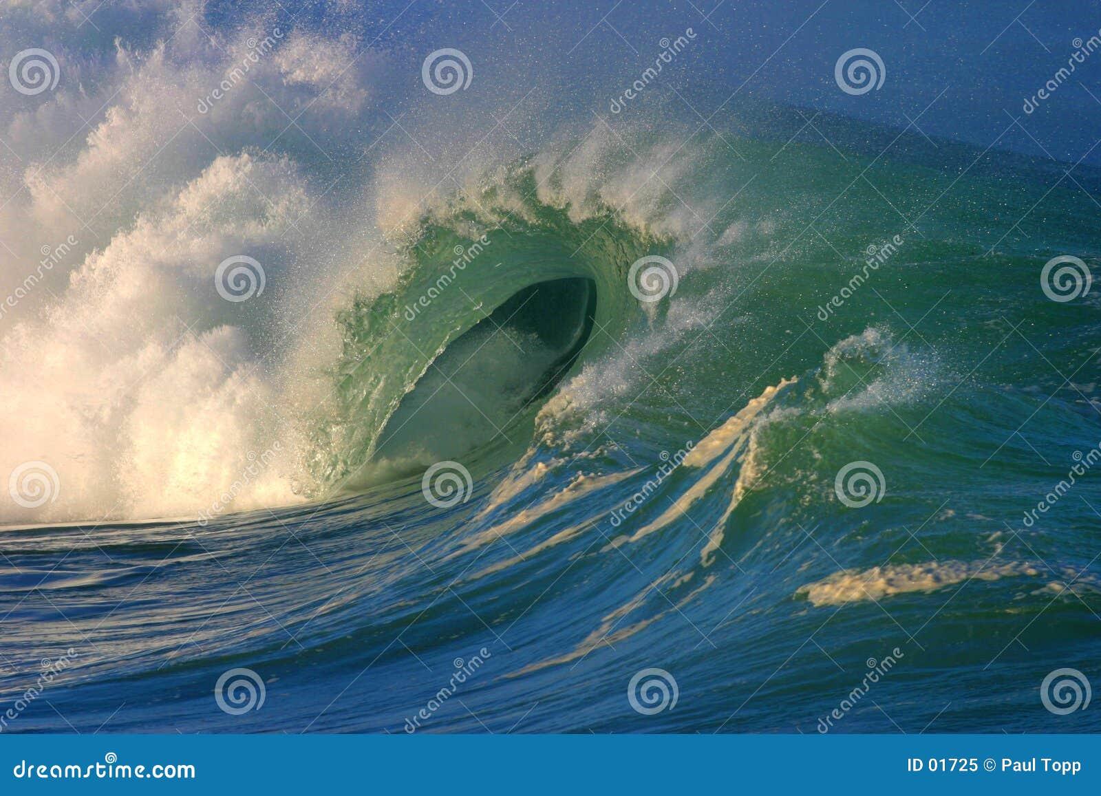La onda perfecta