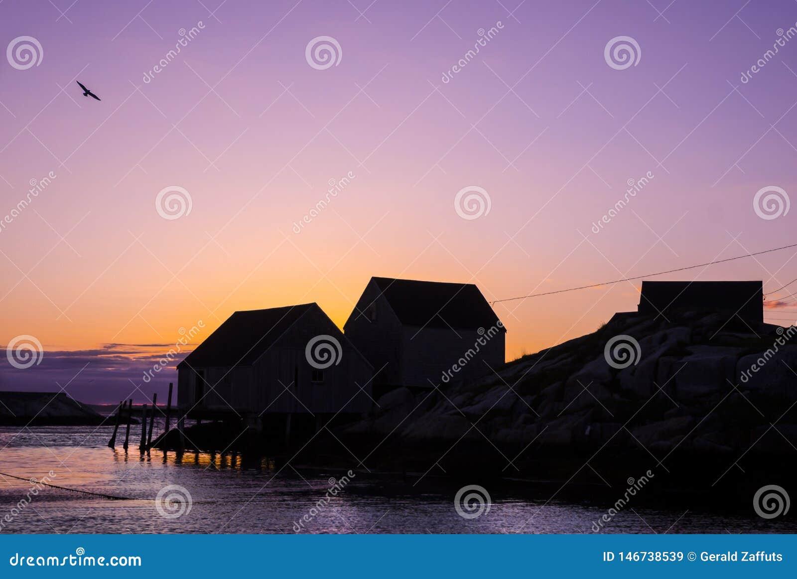 La pêche de Nova Scotia jette au coucher du soleil avec la mouette de vol