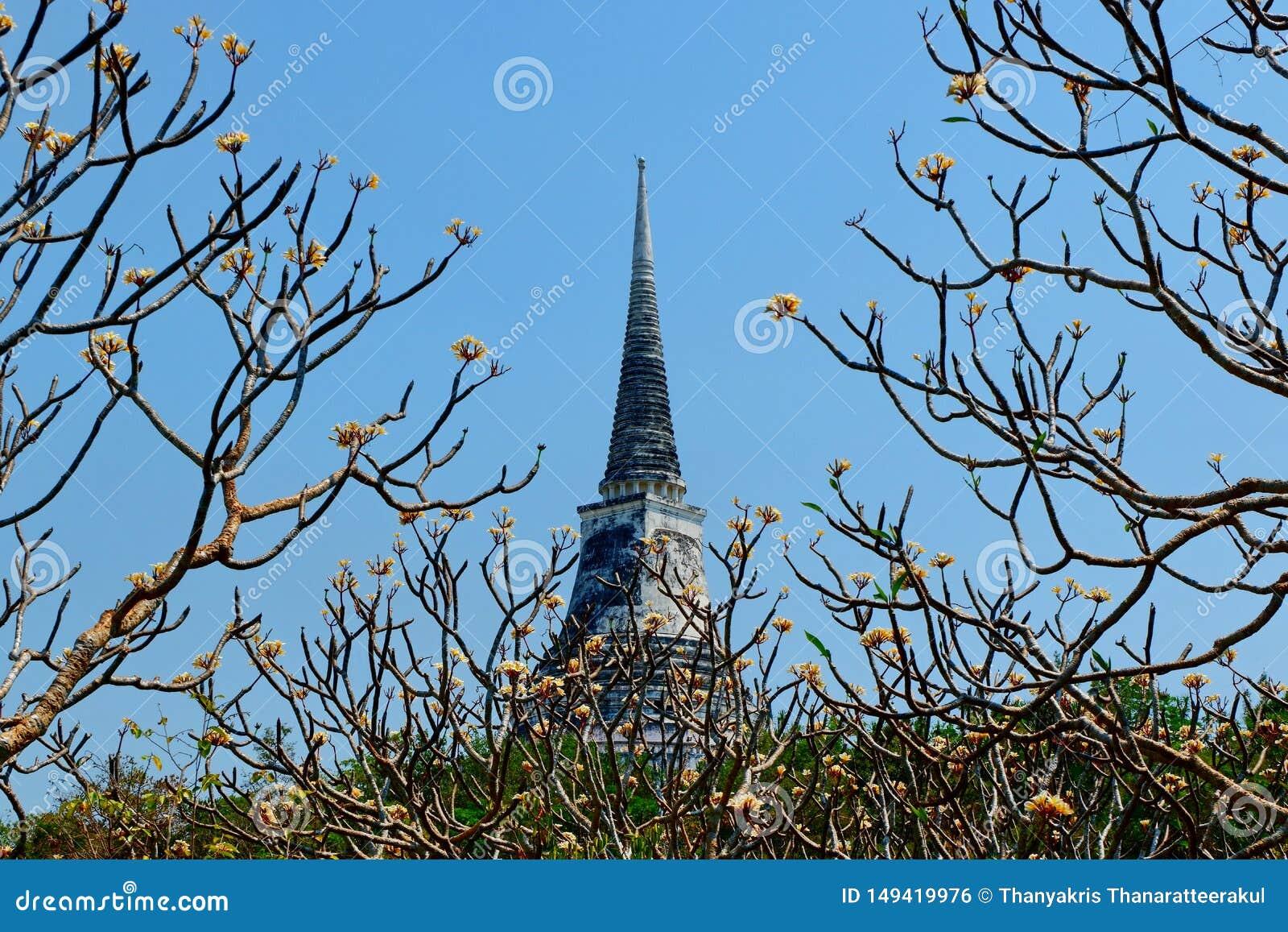 La pagoda del tempio sull alta sommit?