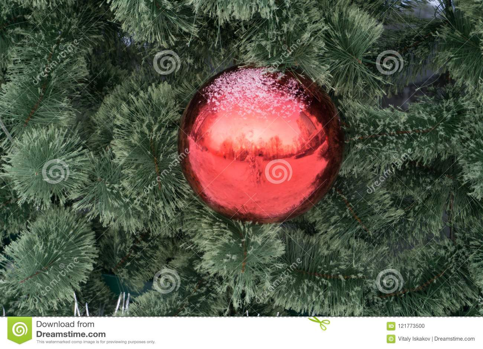 La palla rossa di natale decora sul pino con forte effetto della luce per fare il copyspace dalla parte di sinistra concetto per