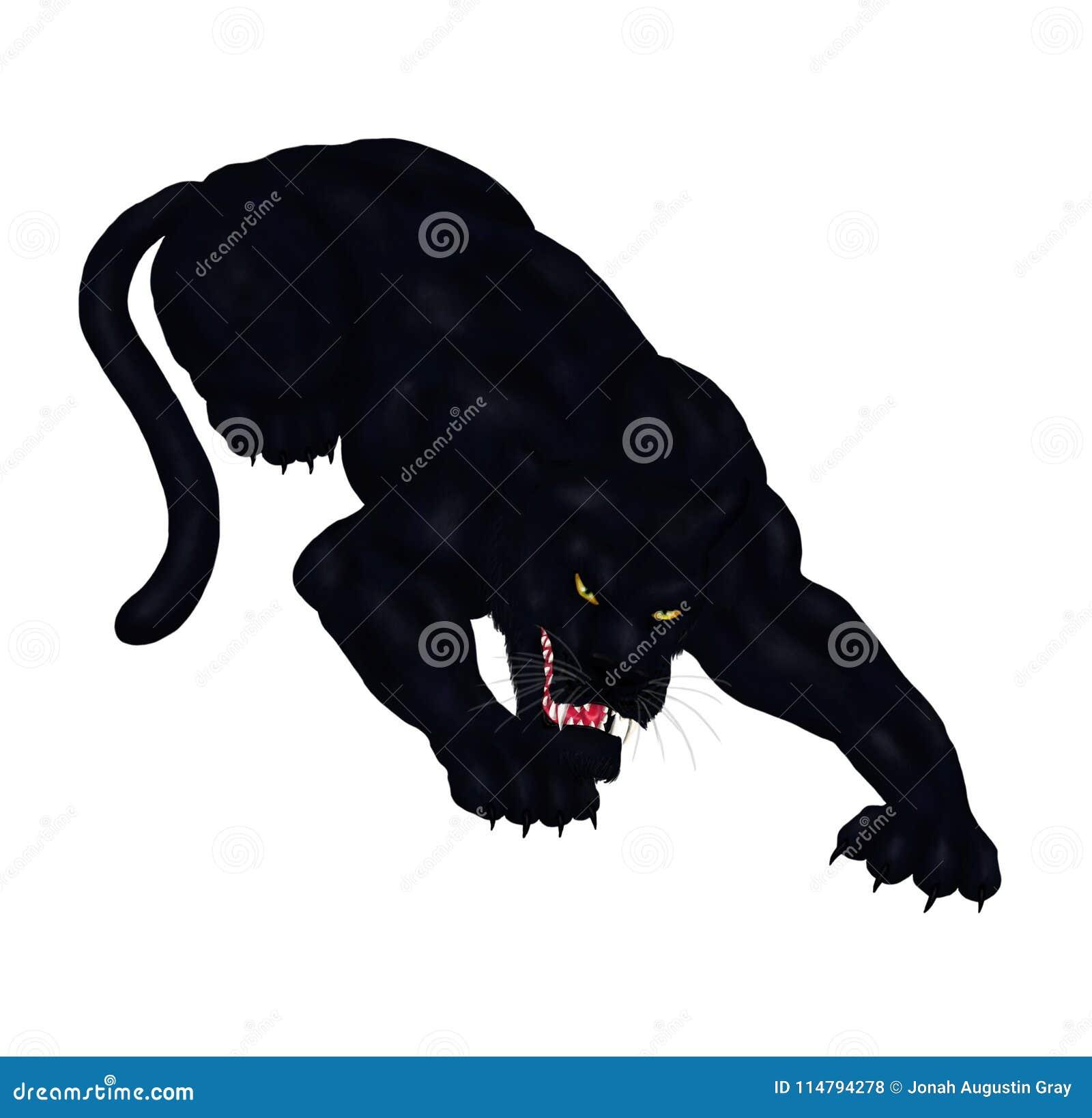 La pantera negra salvaje grande que se agacha, alista para pegar 2018
