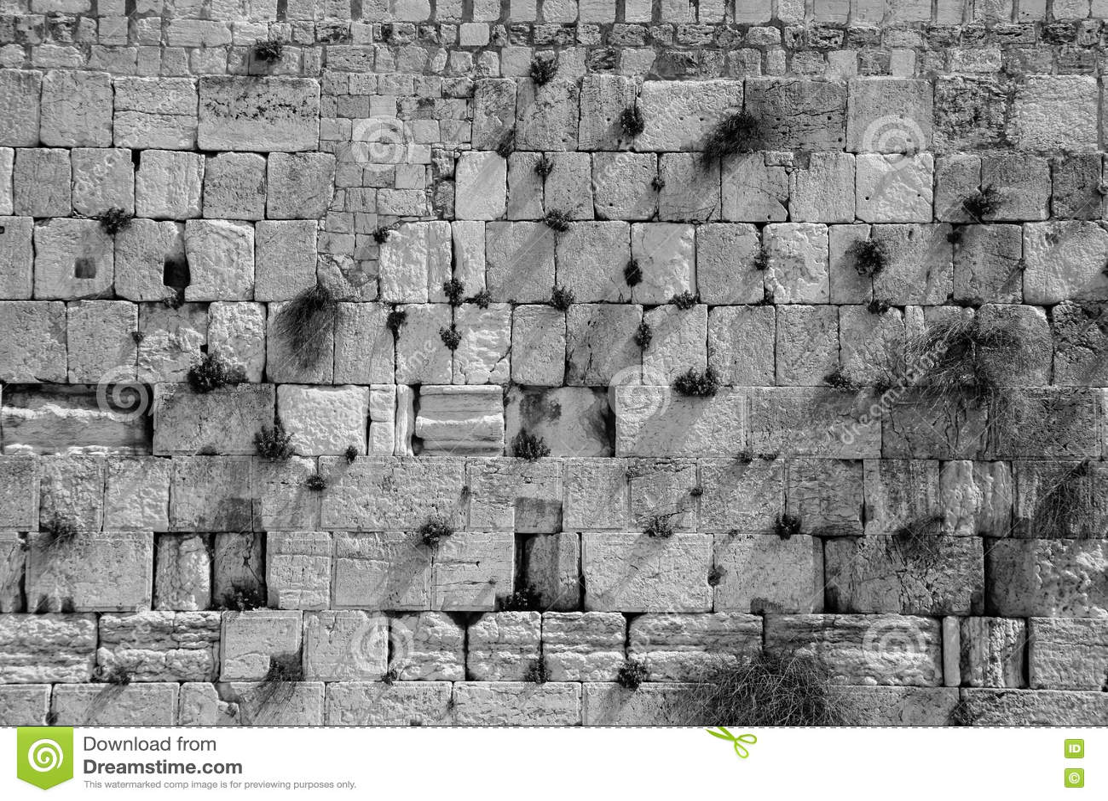 Pareti Con Foto In Bianco E Nero : La parete lamentantesi in bianco e nero immagine stock immagine