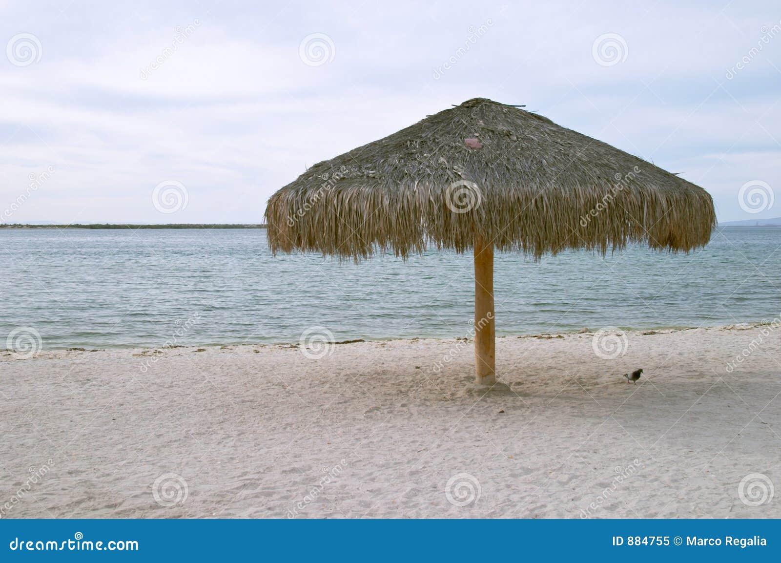 La Paz plażowy parasolkę