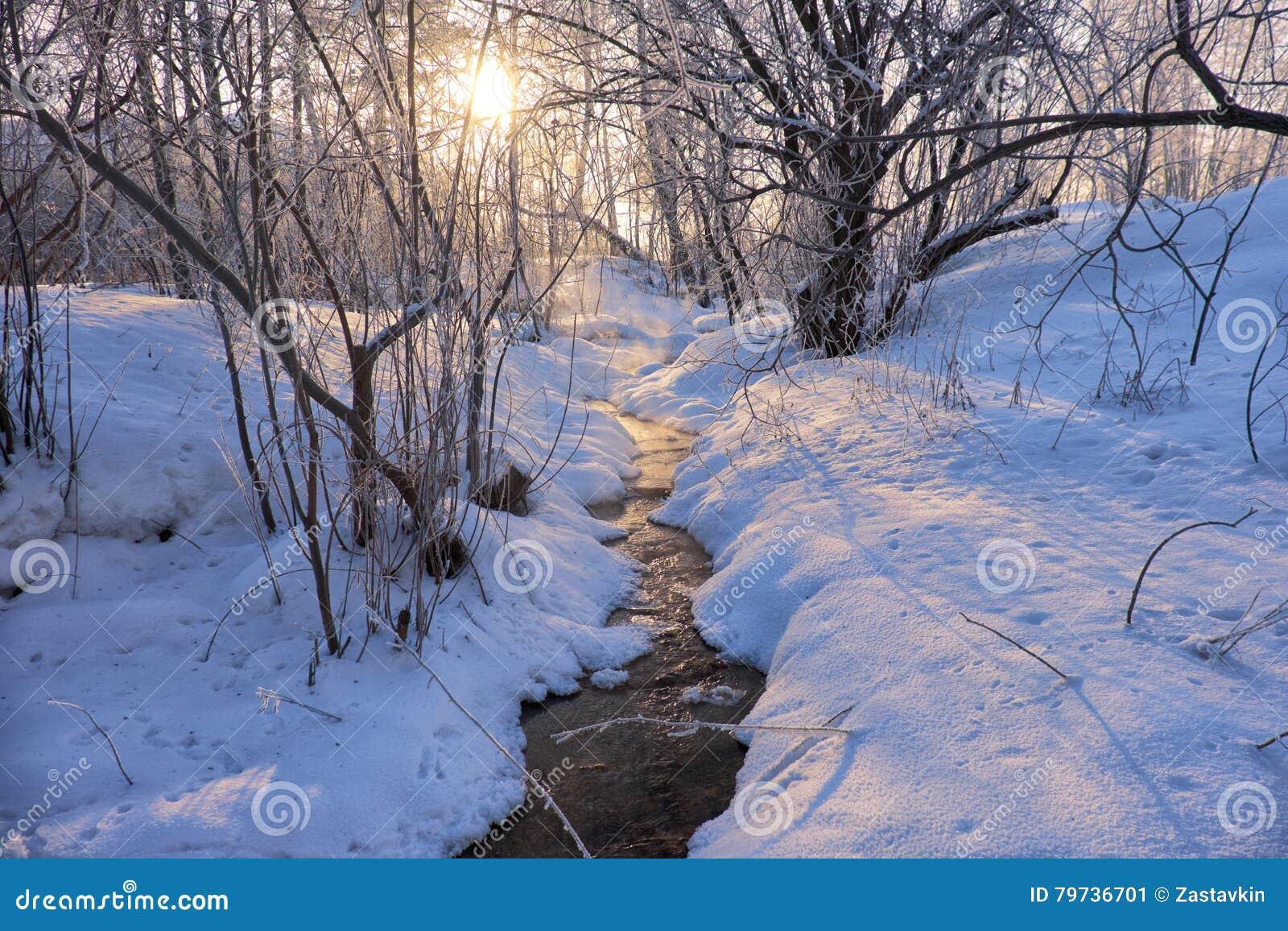 La pequeña corriente del invierno debajo de la nieve y el hielo en invierno sazonan