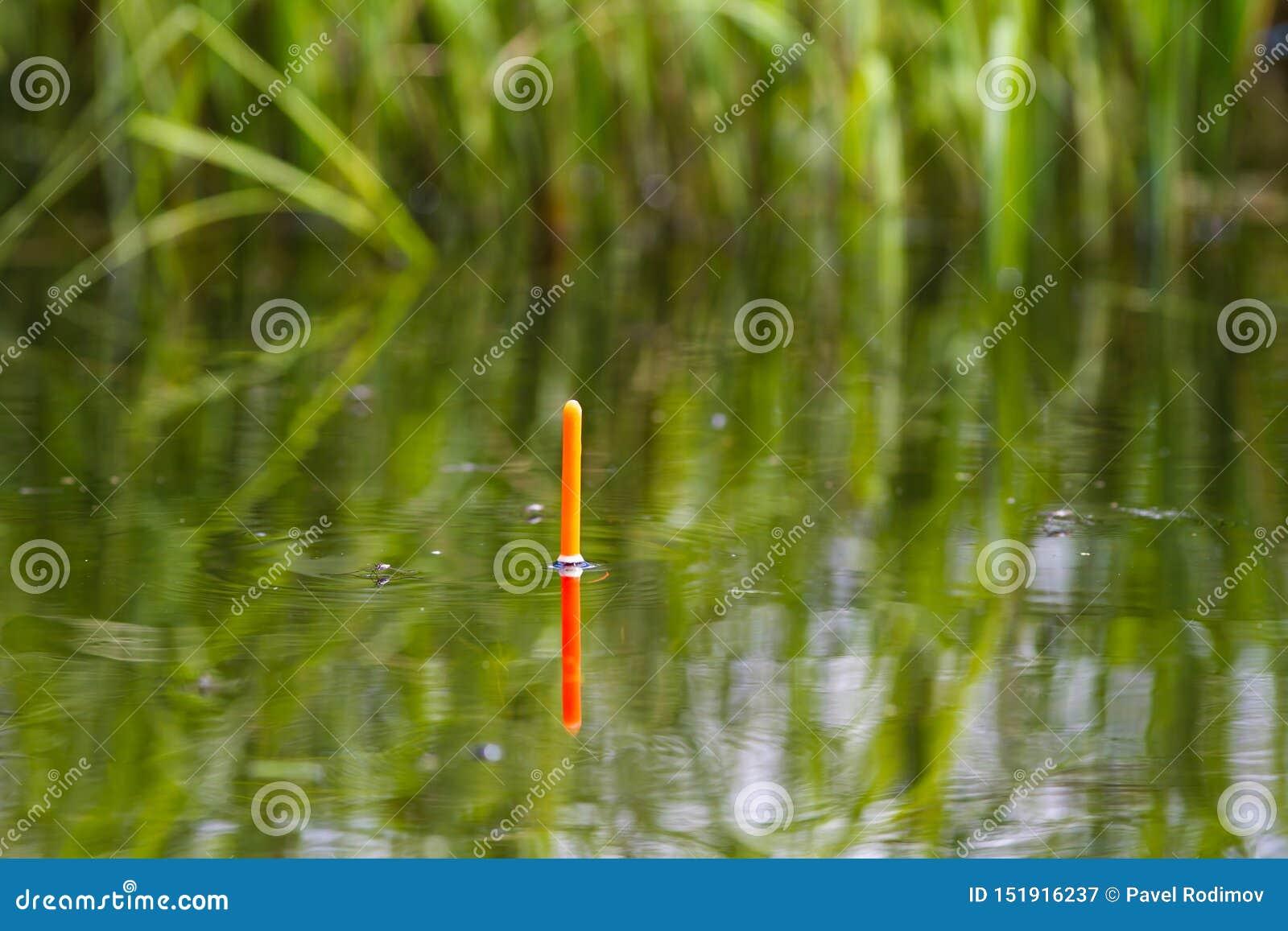 La pesca del galleggiante sta sulla superficie del lago