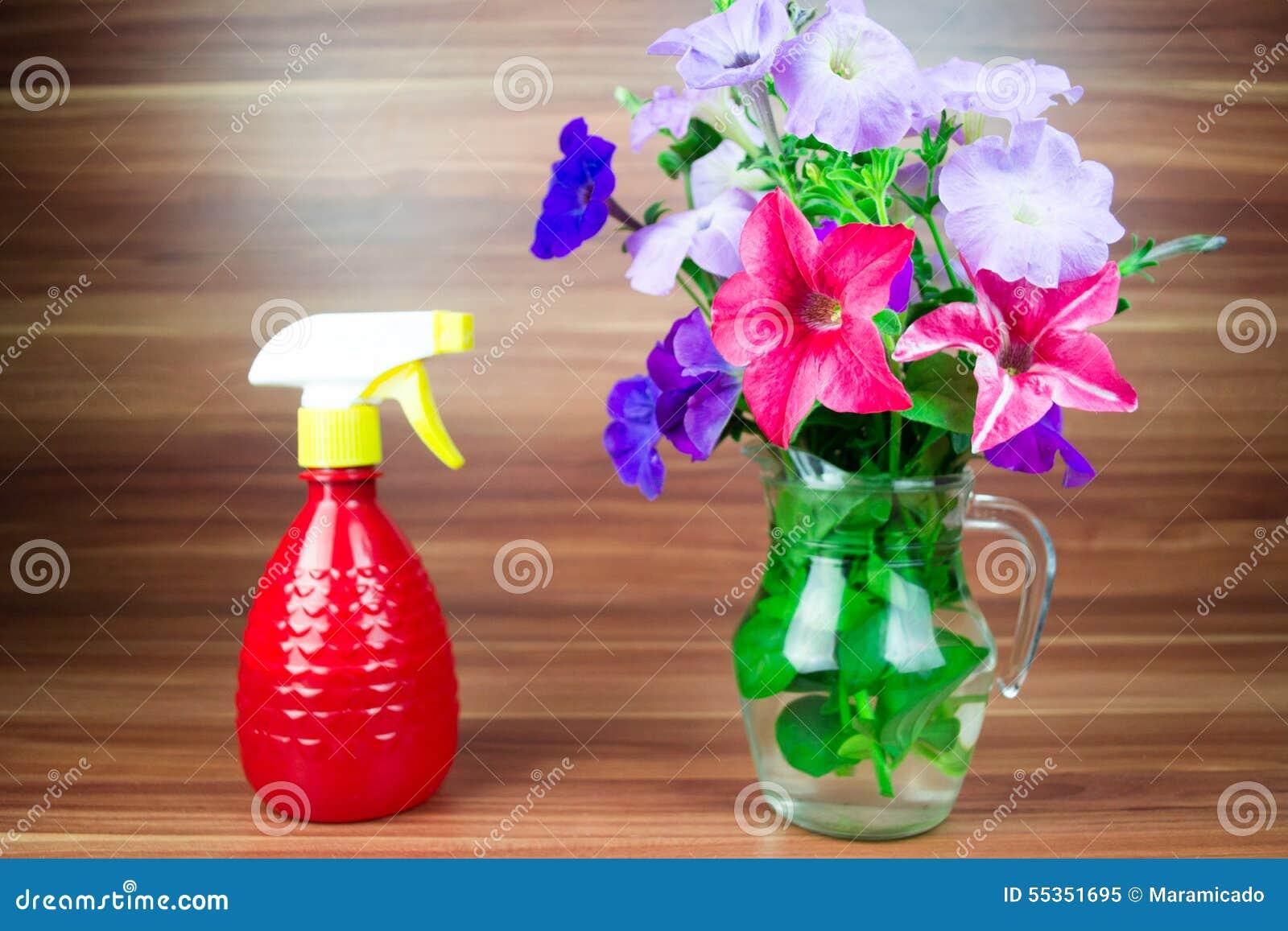 La petunia variopinta fiorisce in un lanciatore di vetro con l annaffiatoio