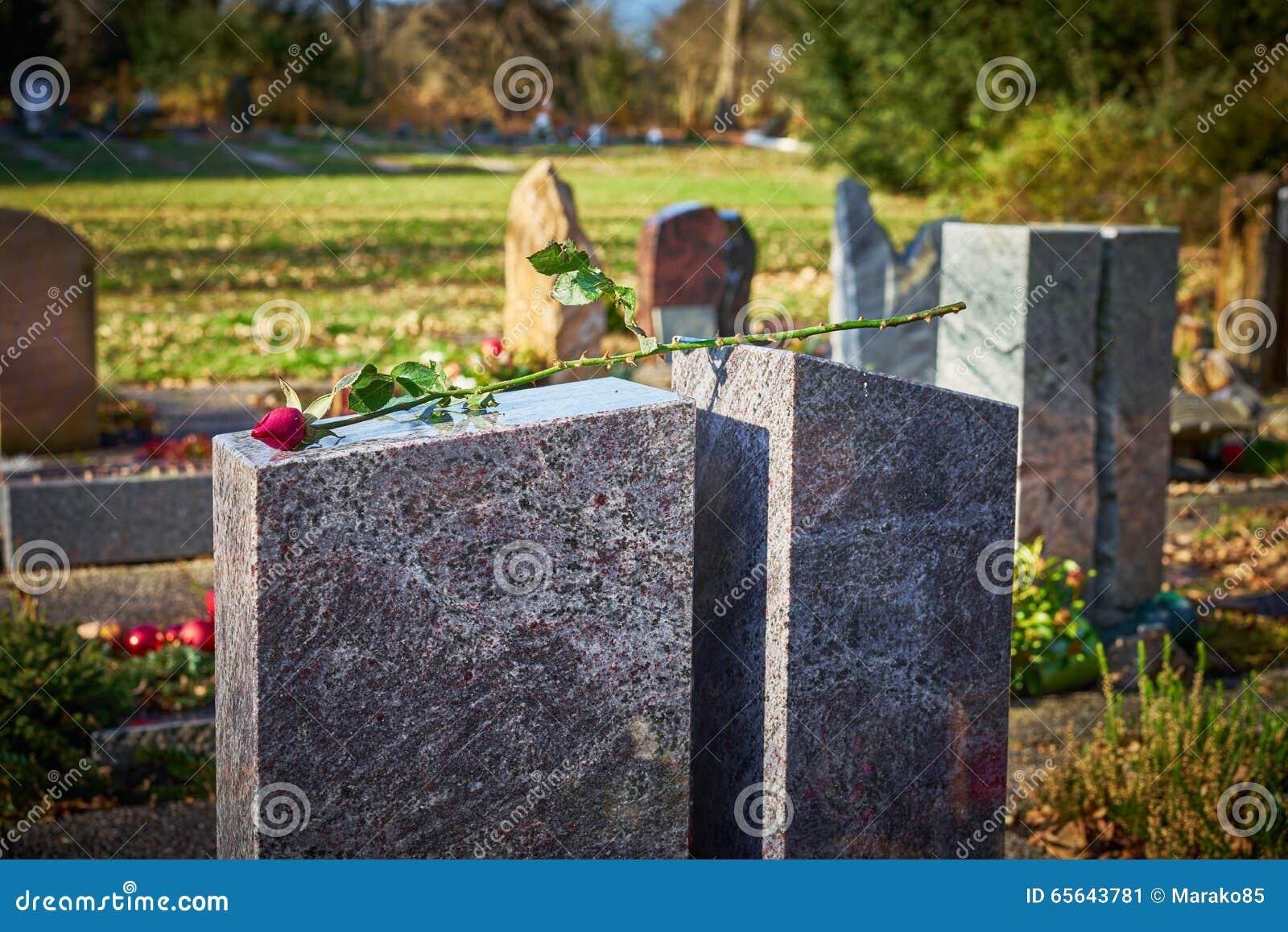 La pierre grave avec défraîchi s est levée