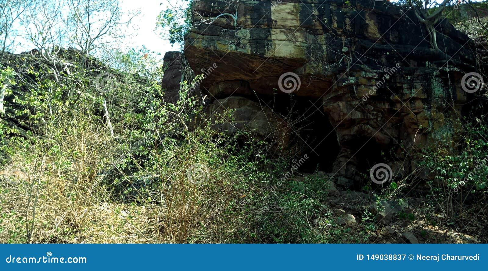 La pietra storica frana la foresta