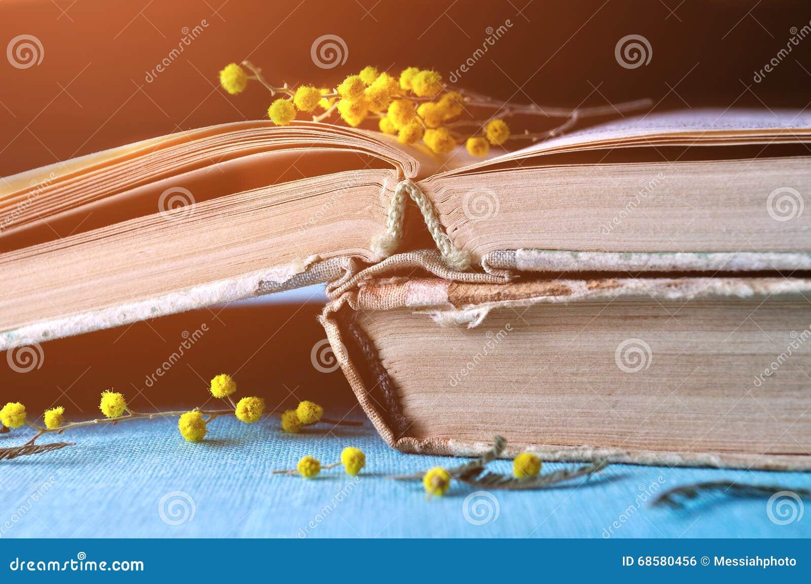Fiori Gialli Libri.La Pila Di Vecchi Libri Consumati Con I Fiori Gialli Della Mimosa