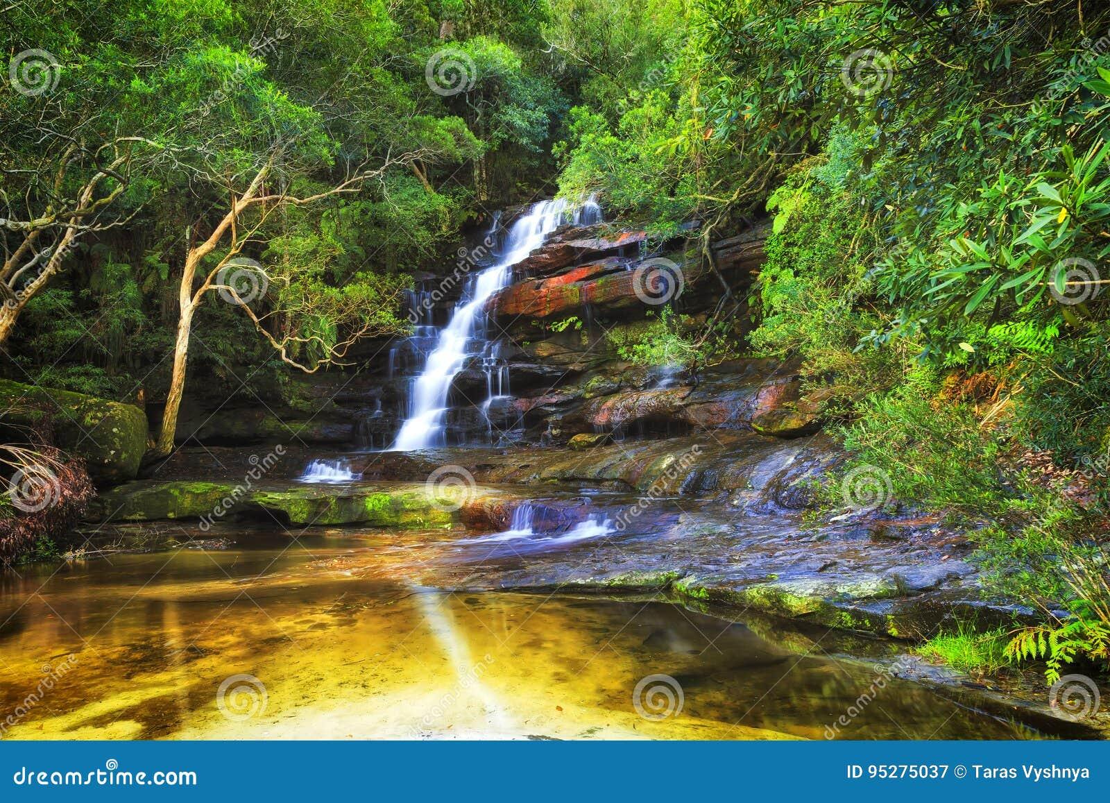 la piscine somersby de wf reflètent des arbres image stock - image